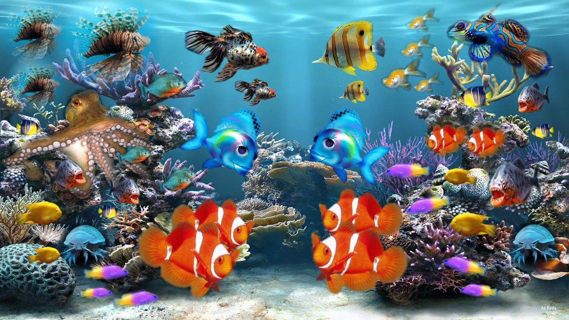 aquarium pictures background
