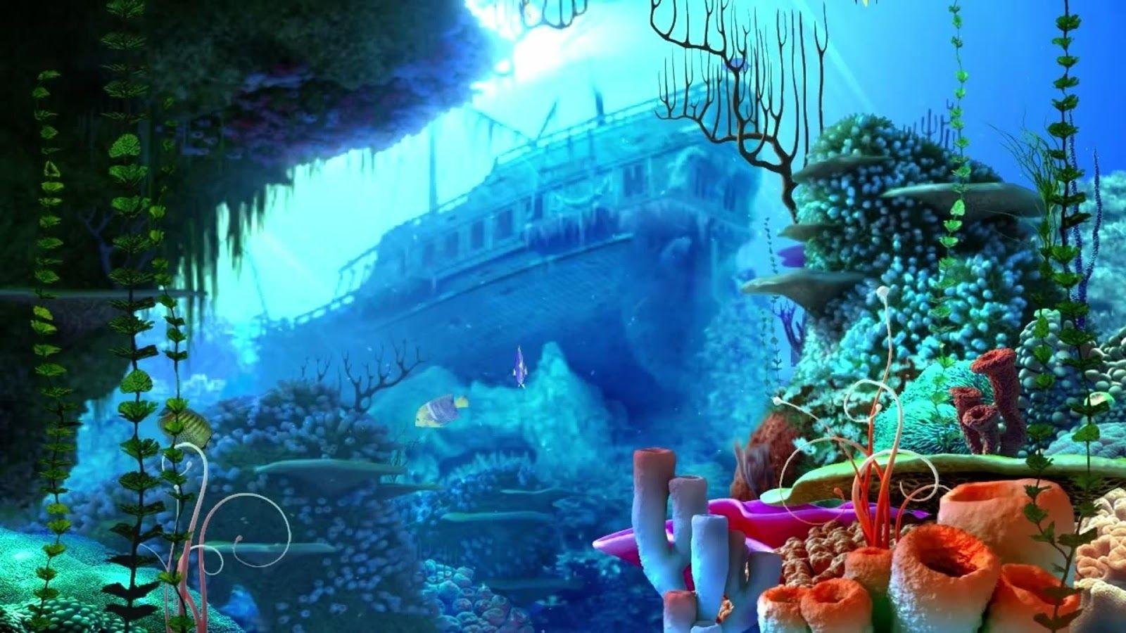 high def aquarium