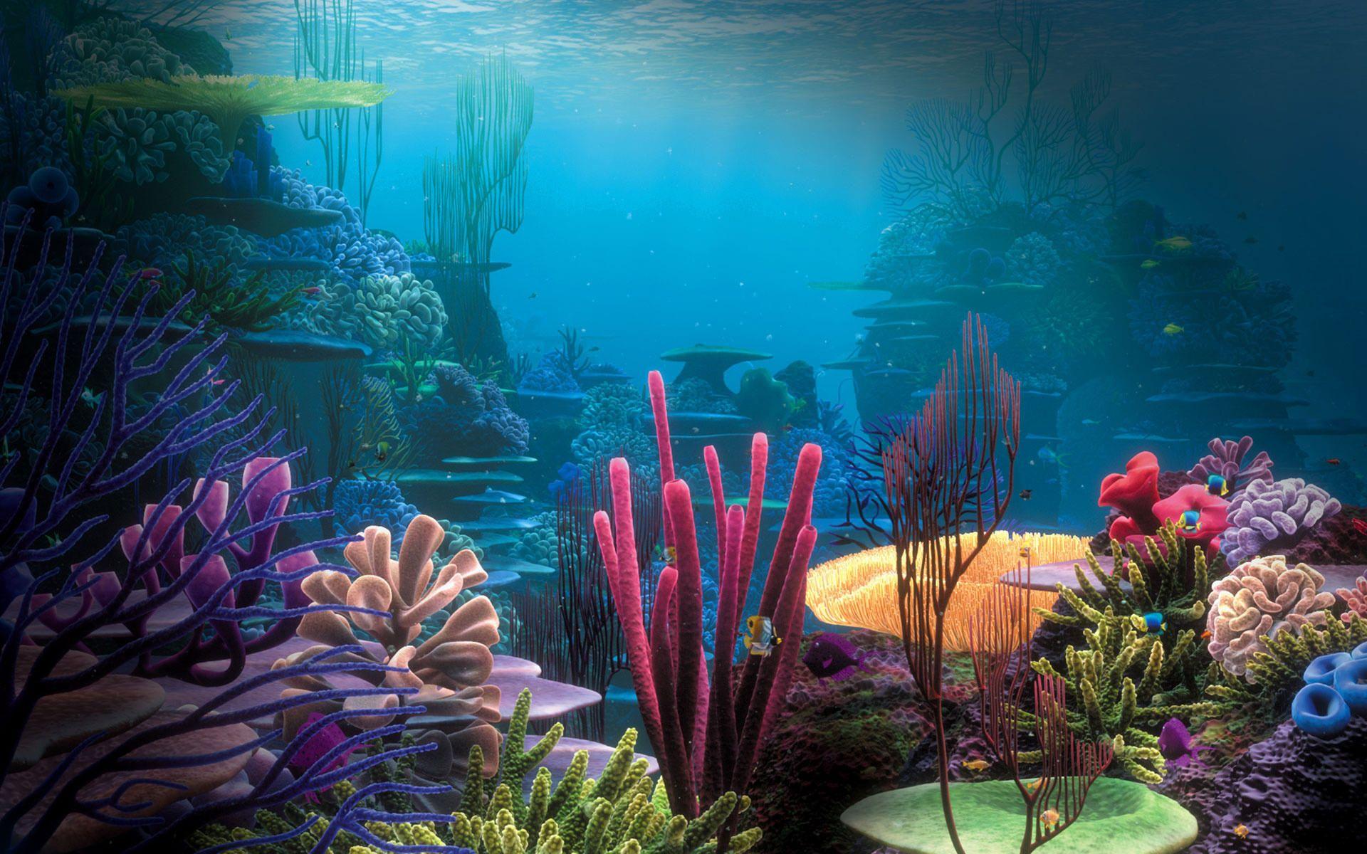 pictures of aquariums