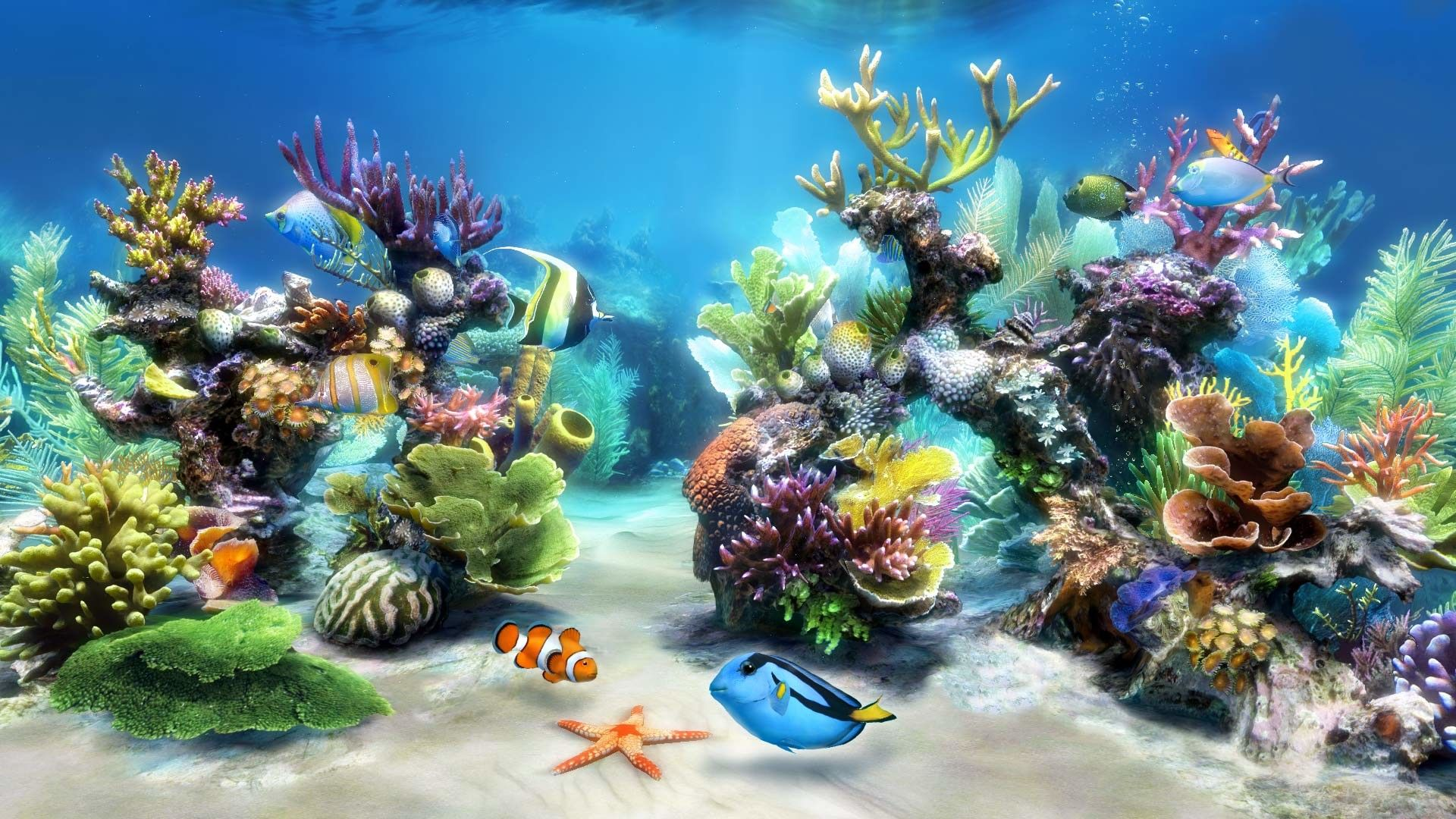 aquarium desktop backgrounds