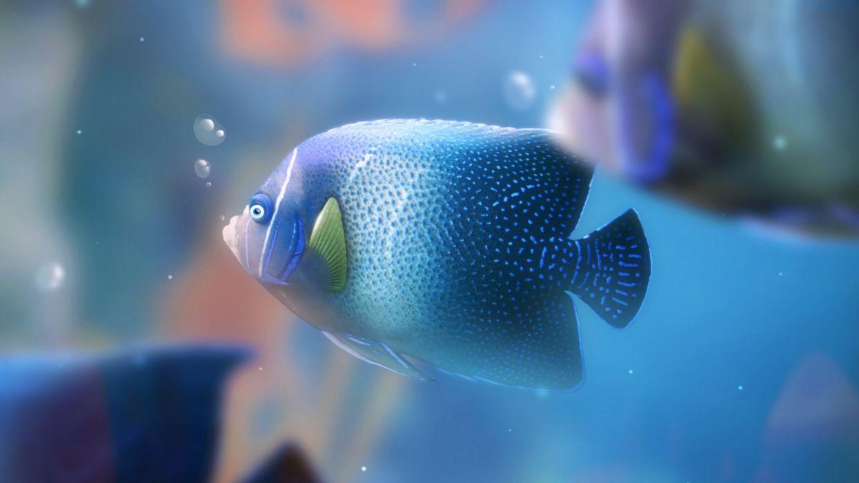 aquarium desktop wallpapers hd