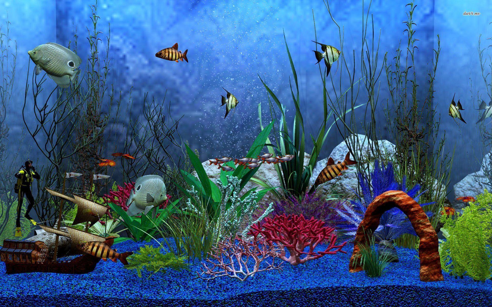 download aquarium wallpapers hd