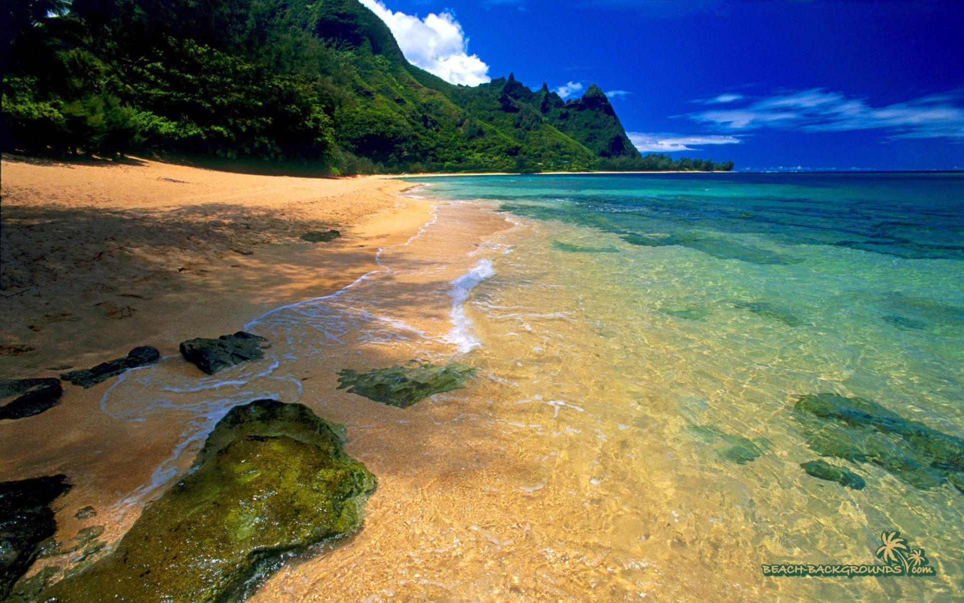 beach background pics
