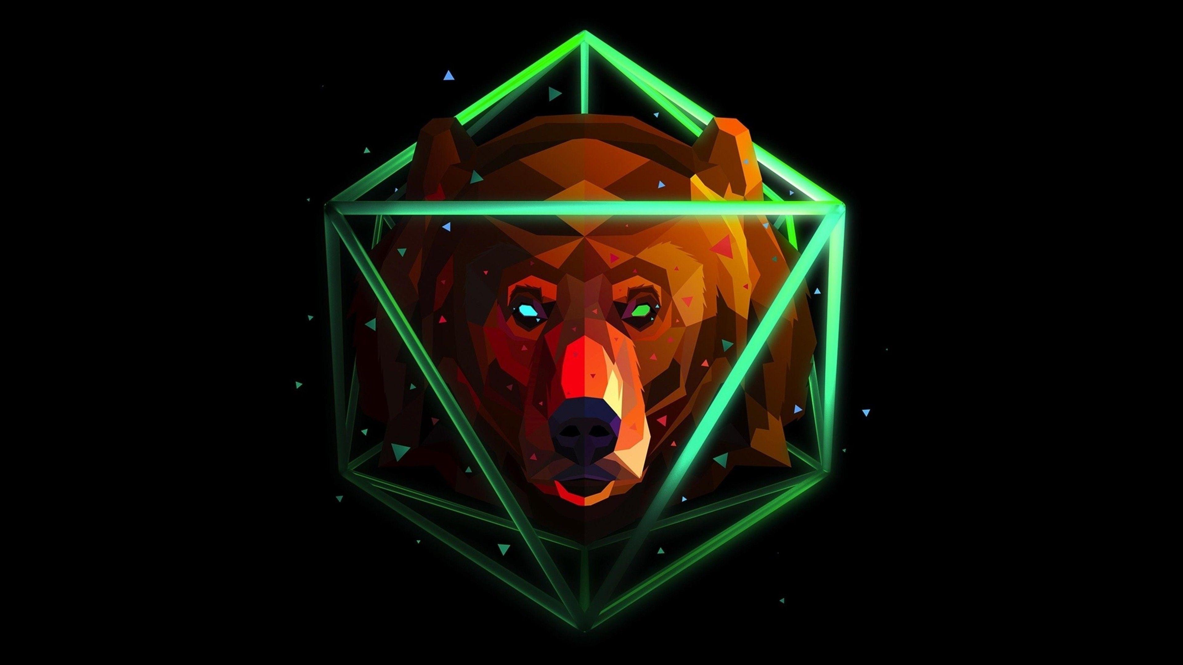 bear desktop backgrounds hd
