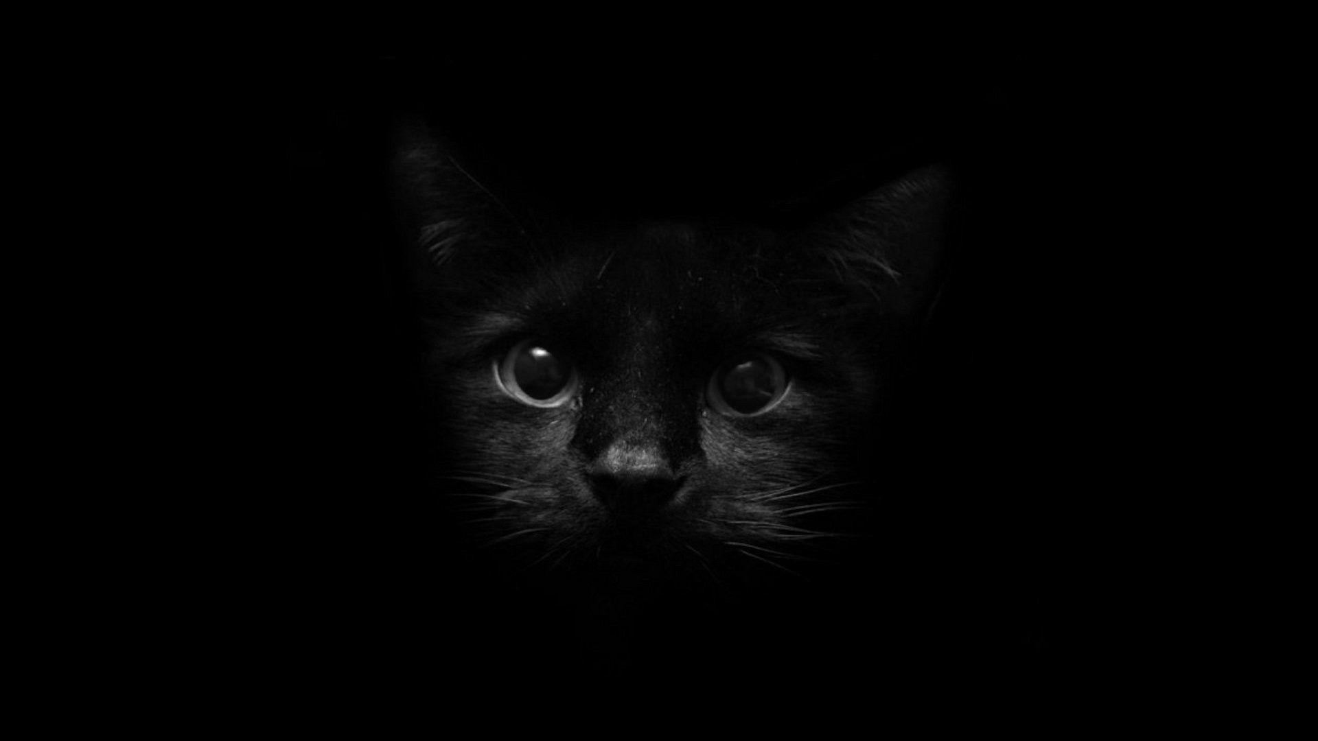 black screen picture