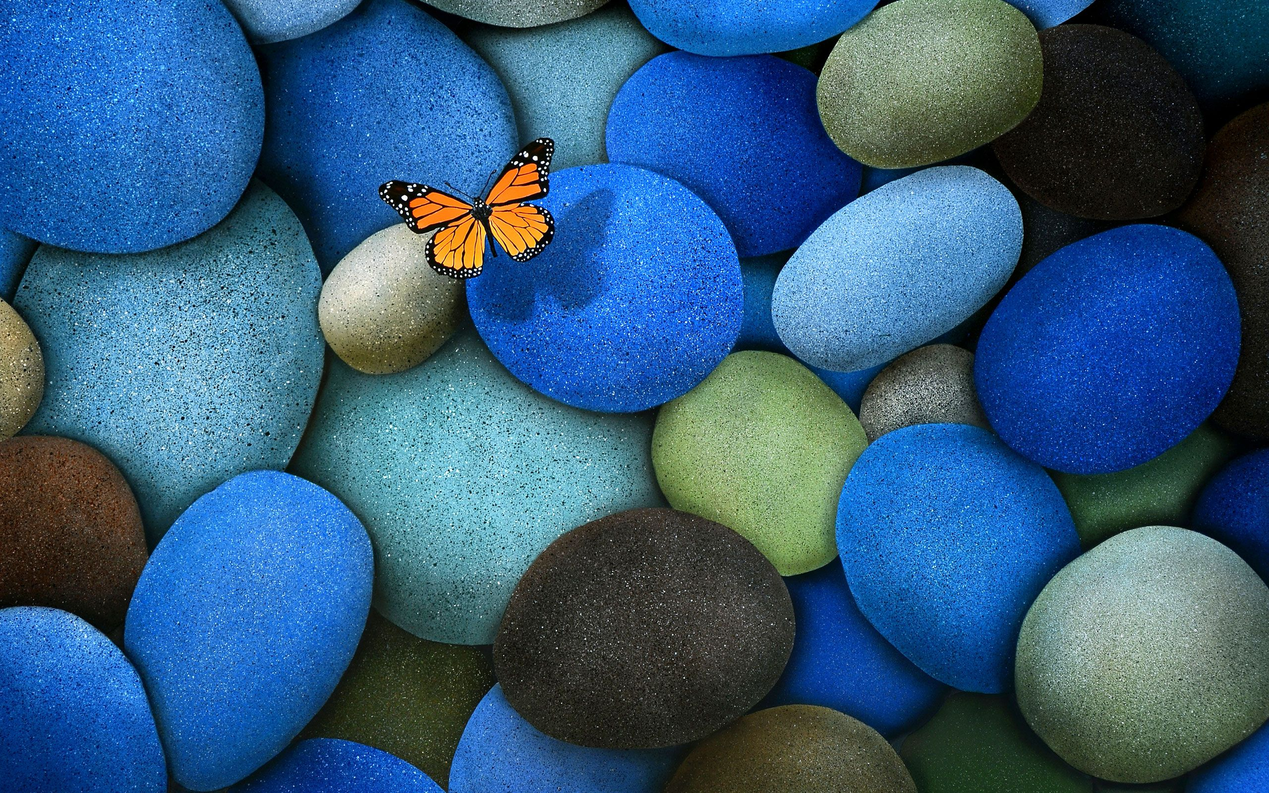 butterfly wallpaper for pc