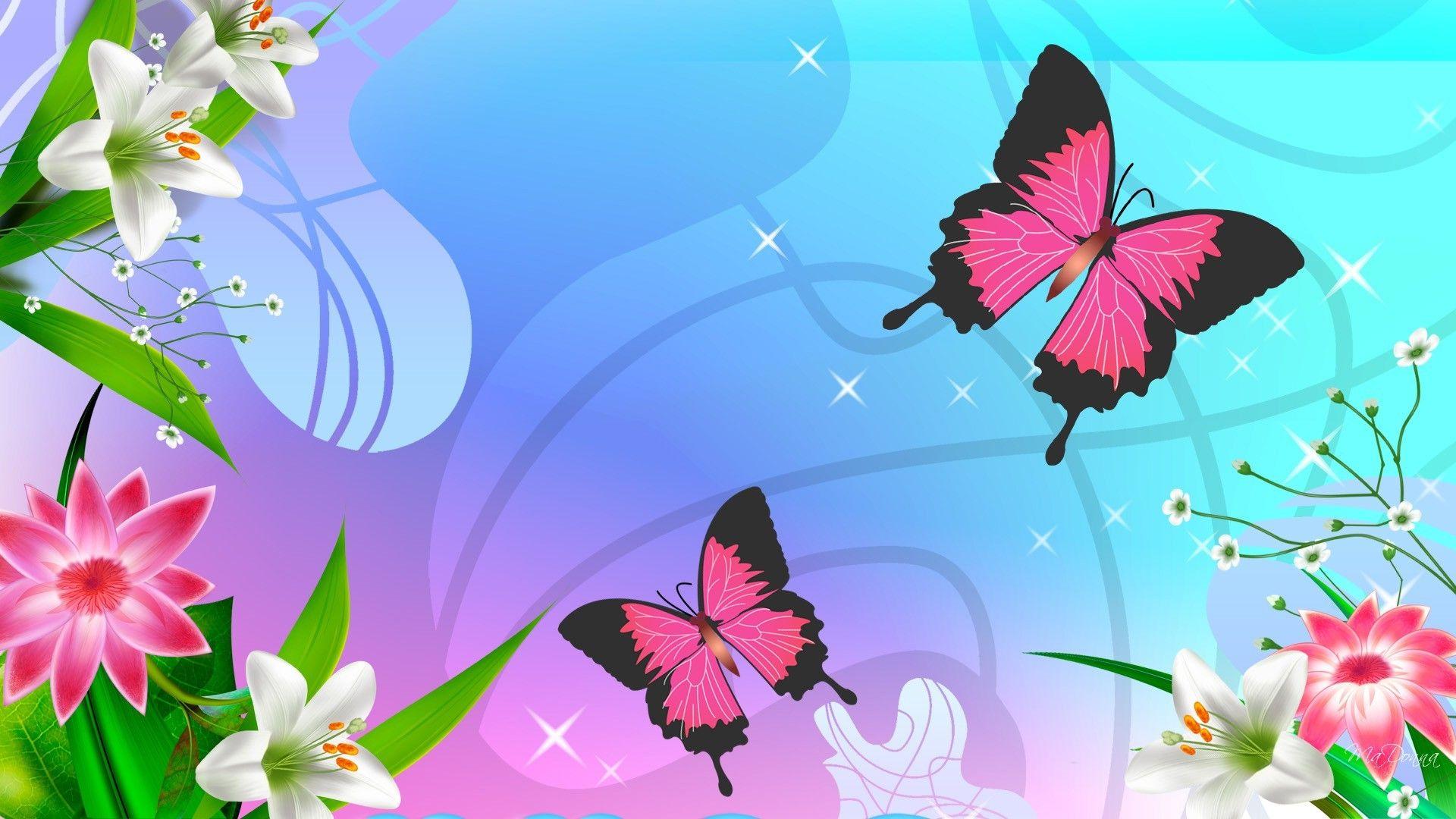 butterfly full hd wallpaper