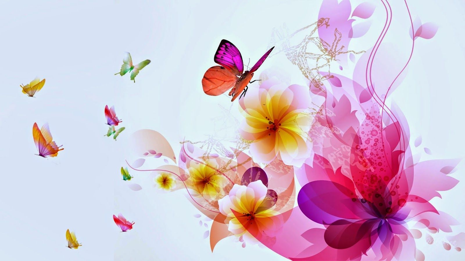 butterfly with flowers wallpapers