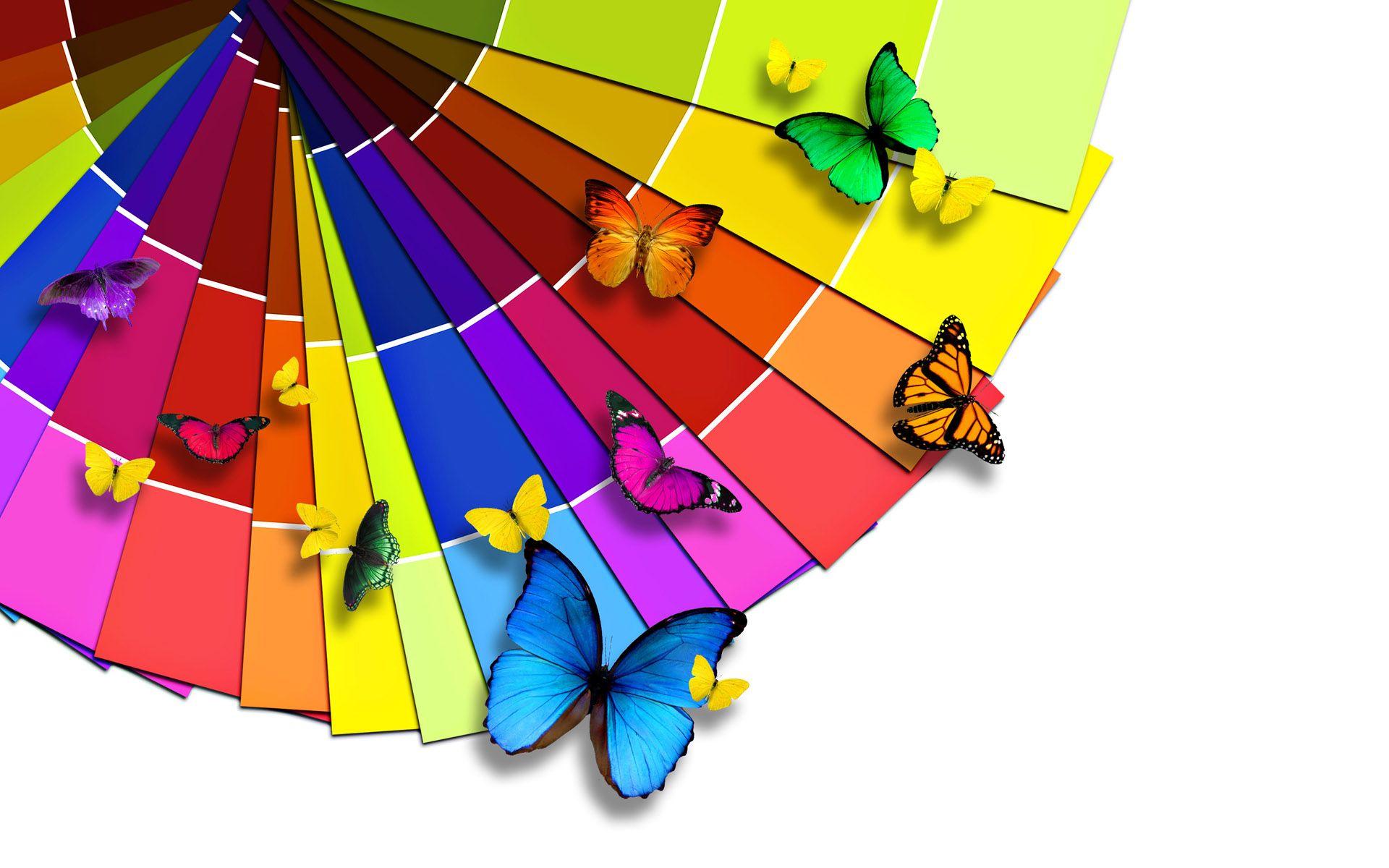 butterfly hd wallpaper download