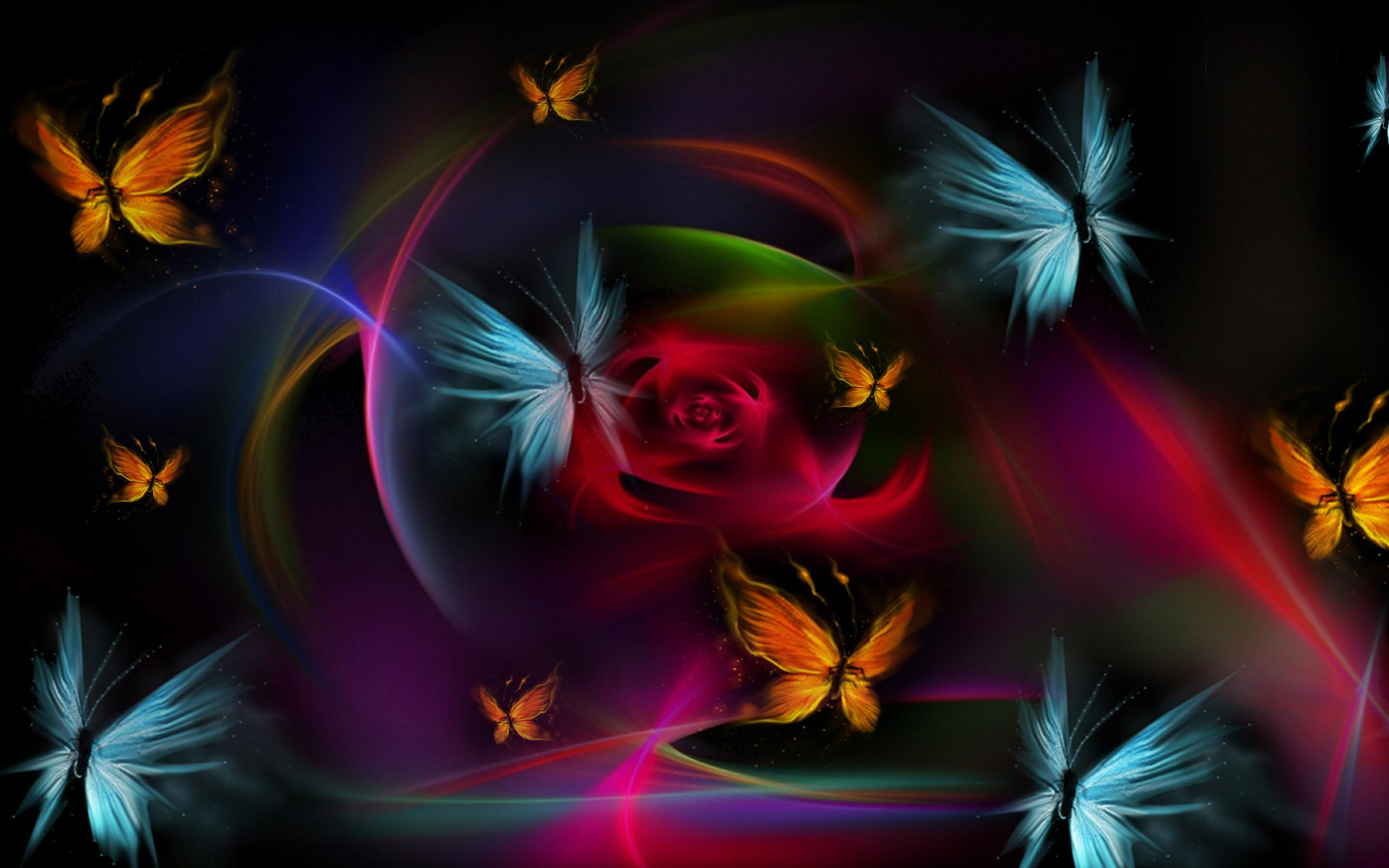 butterfly hd images 1080p