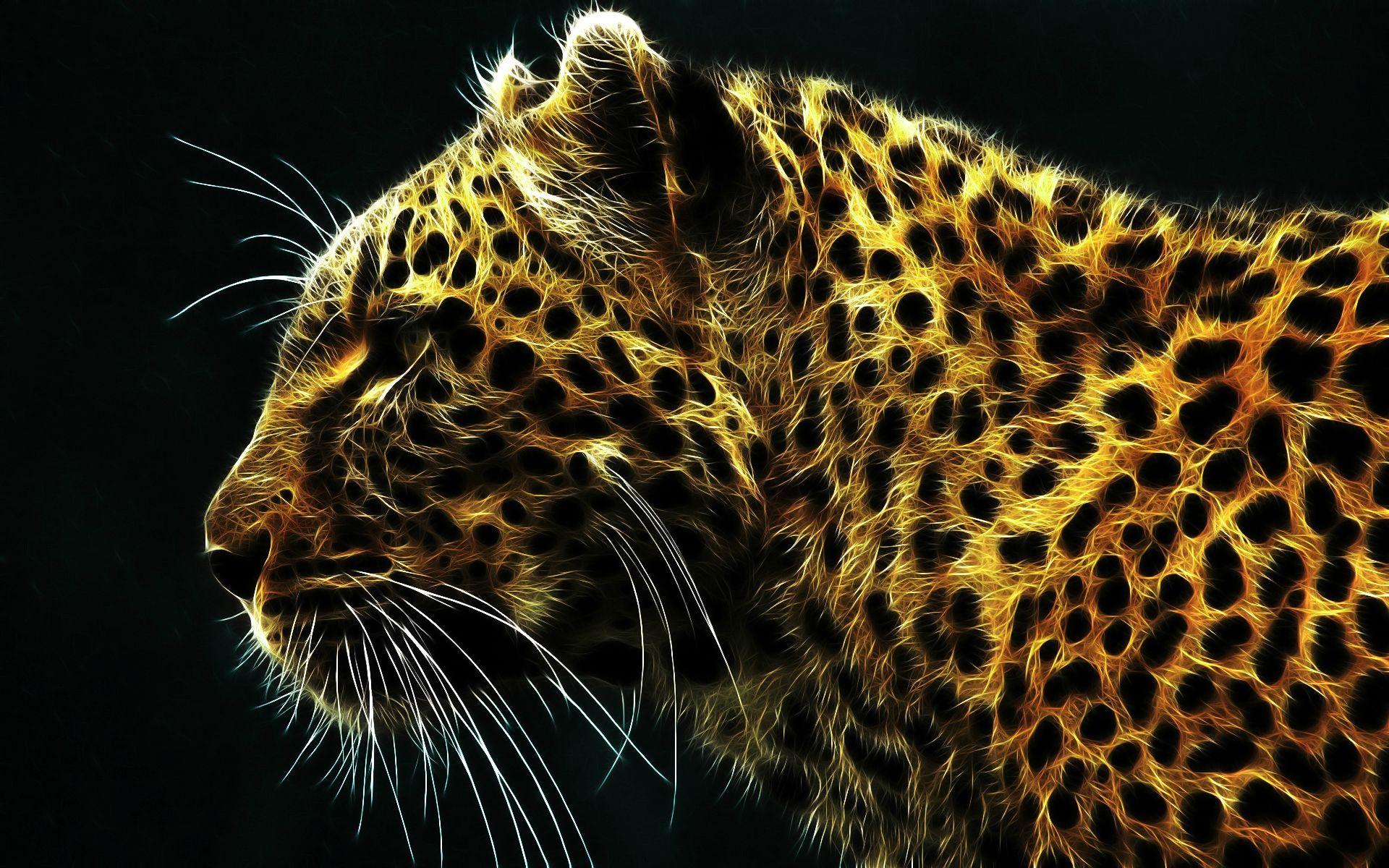 wallpapers cheetah hd