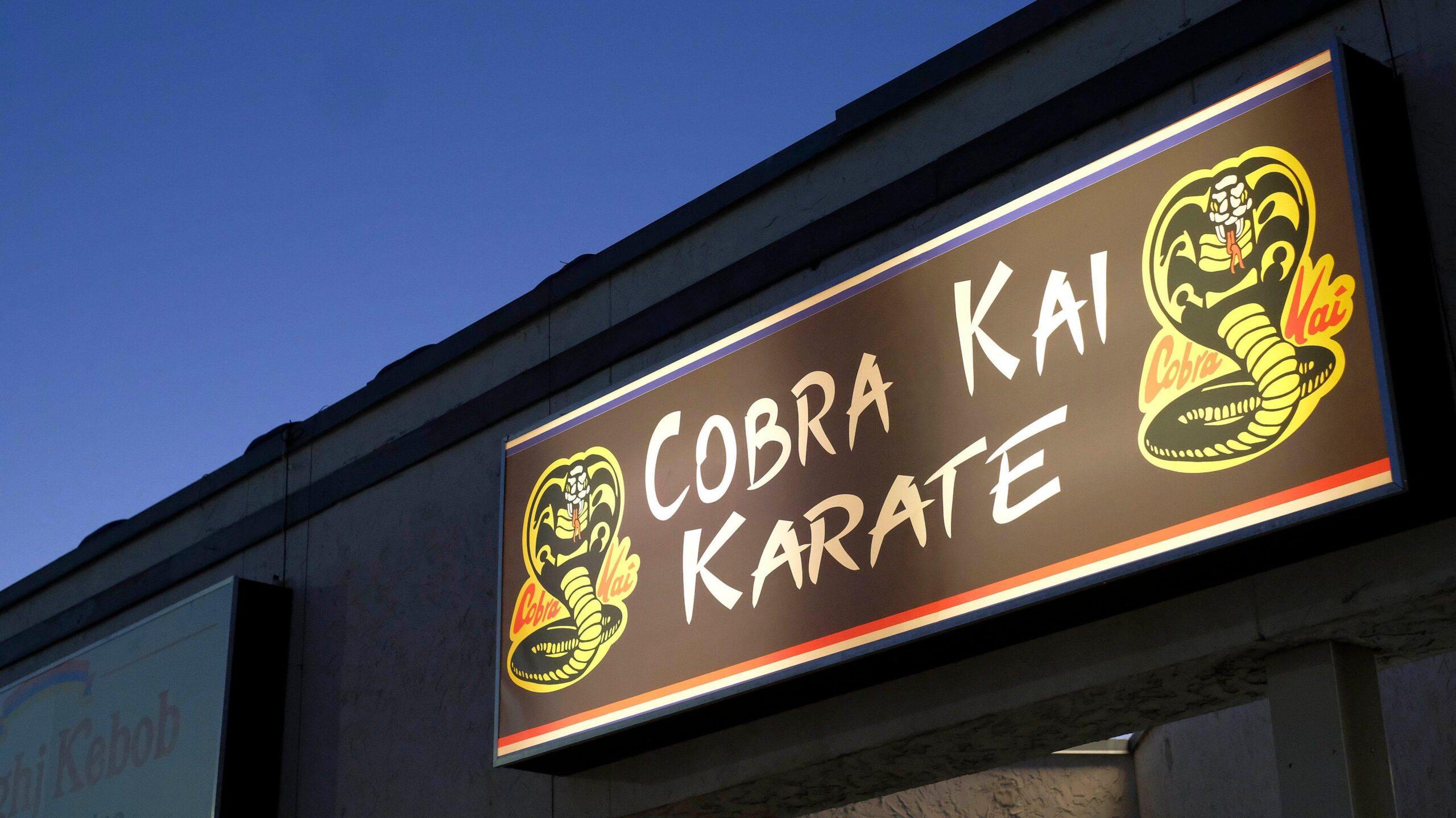 cobra kai wallpaper hd