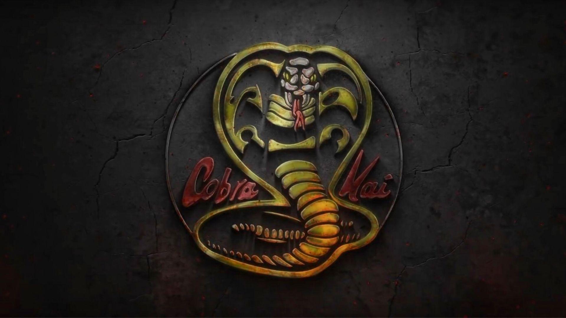 cobra kai wallpaper 4k