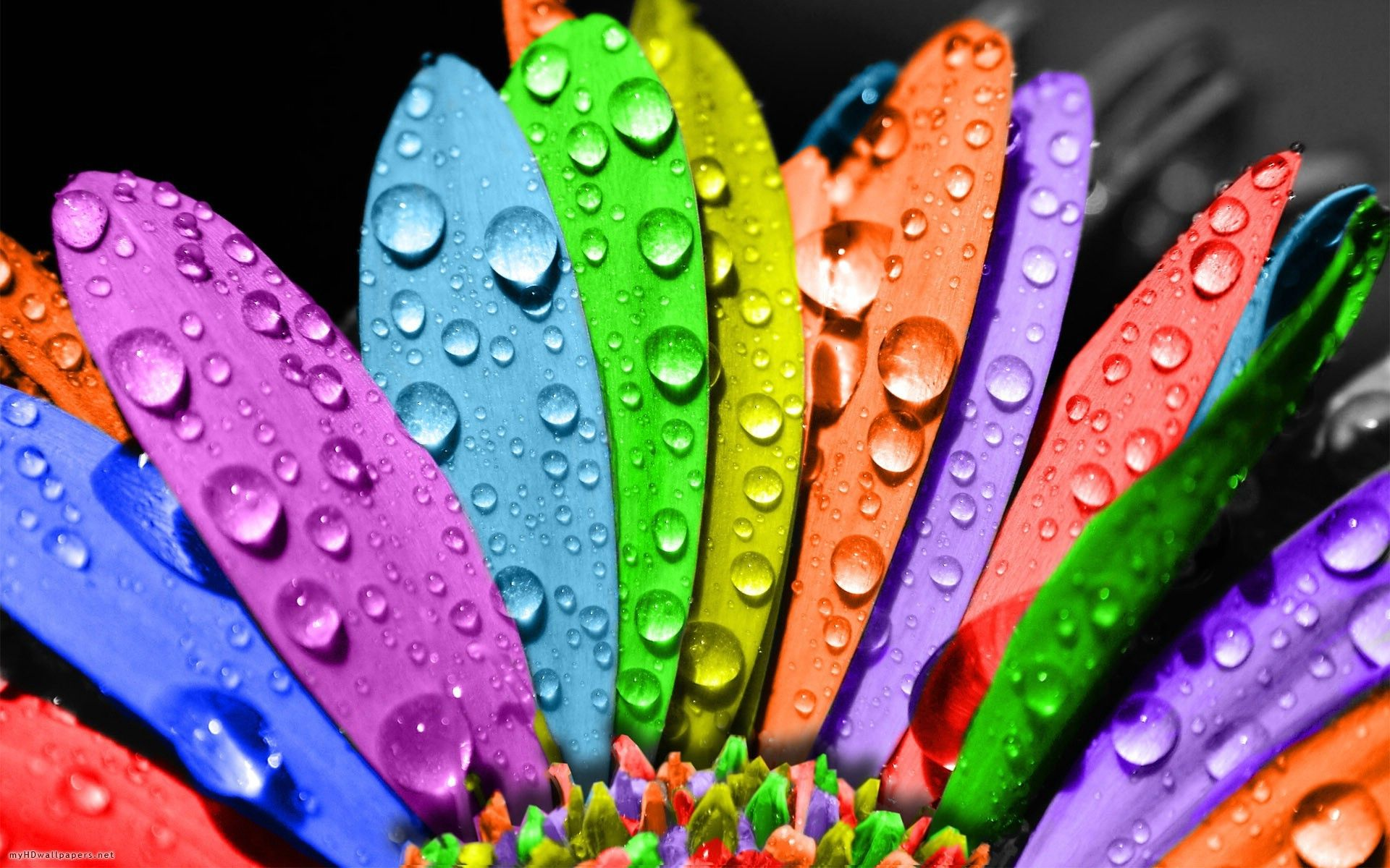 background images colorful