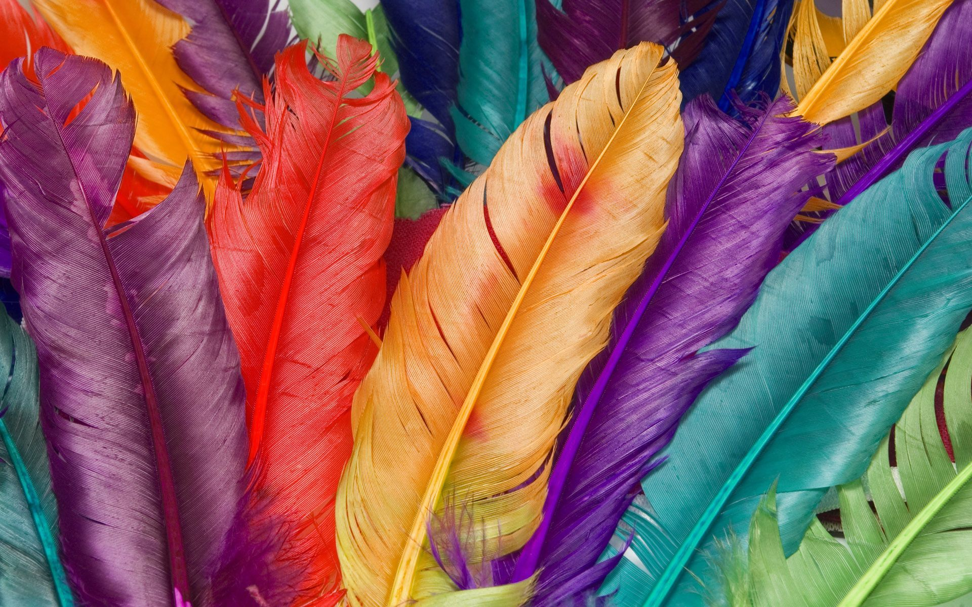 colorful wallpapers backgrounds