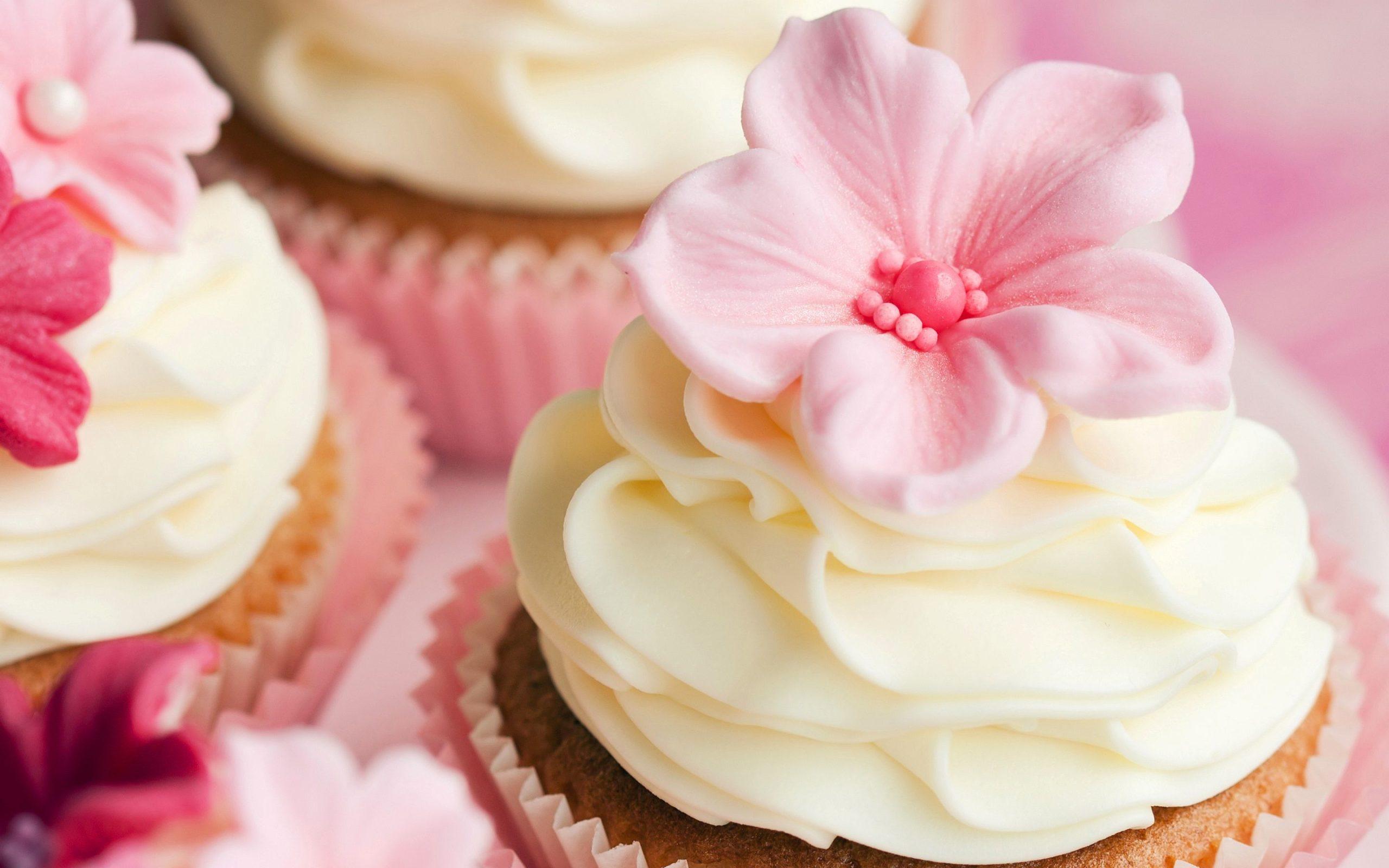 cupcake hd wallpapers