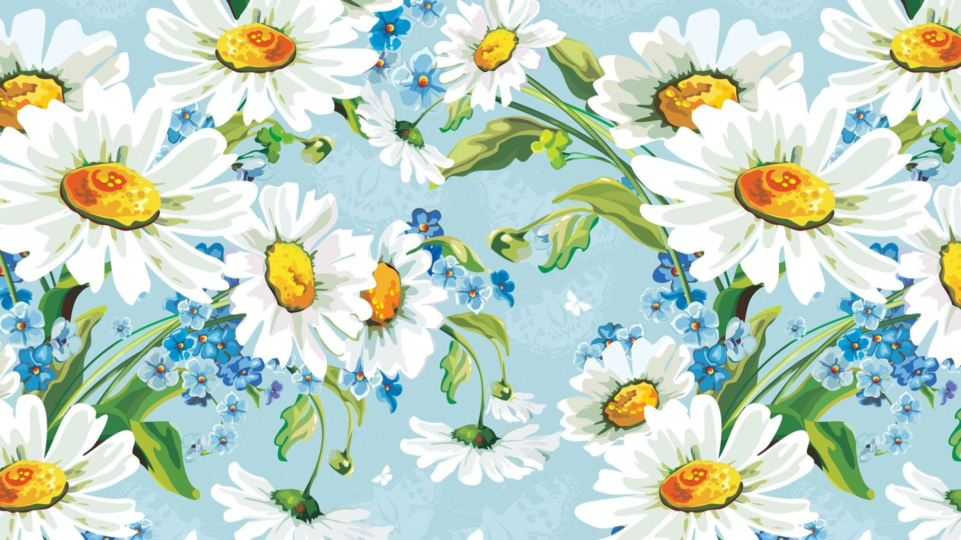 white daisies images hd