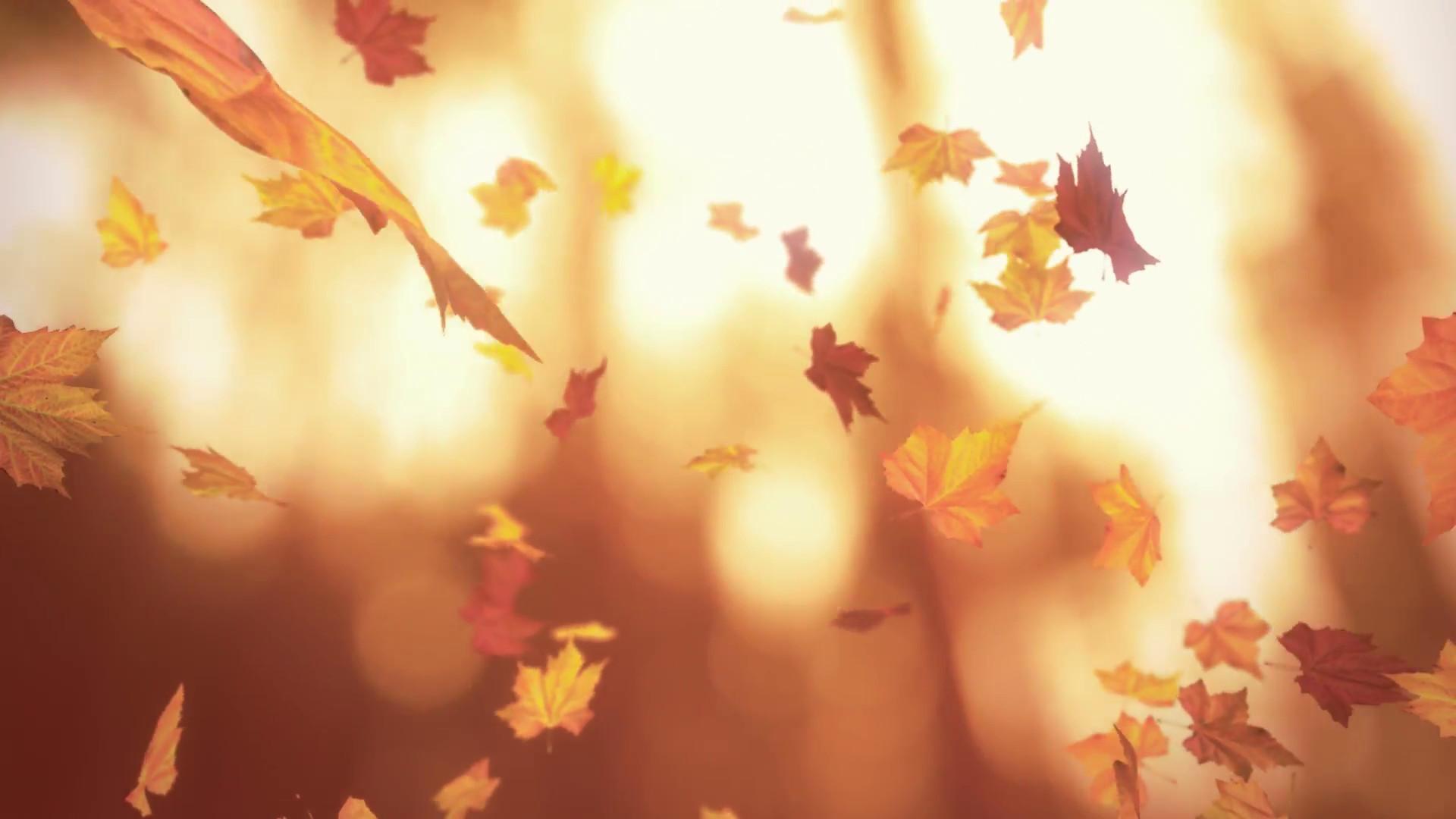 vintage autumn images
