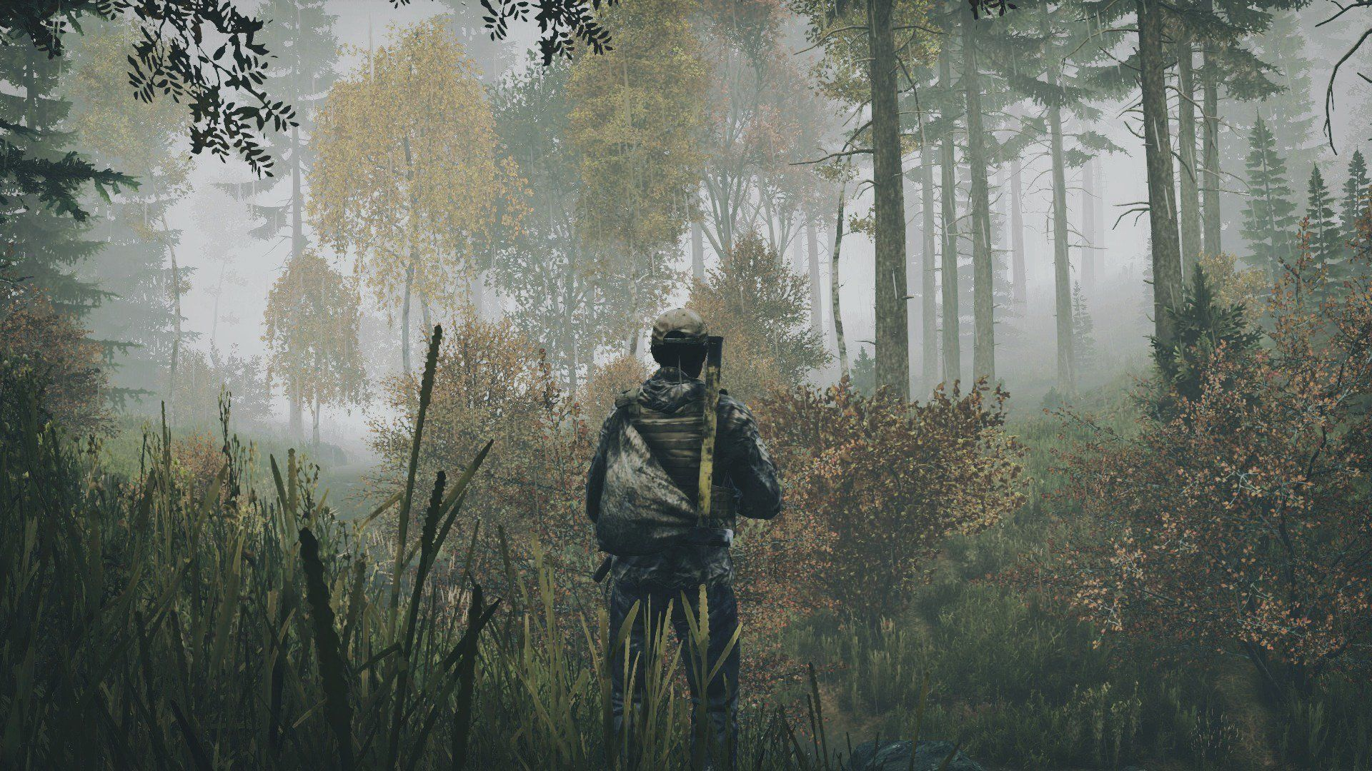dayz survivors wallpaper