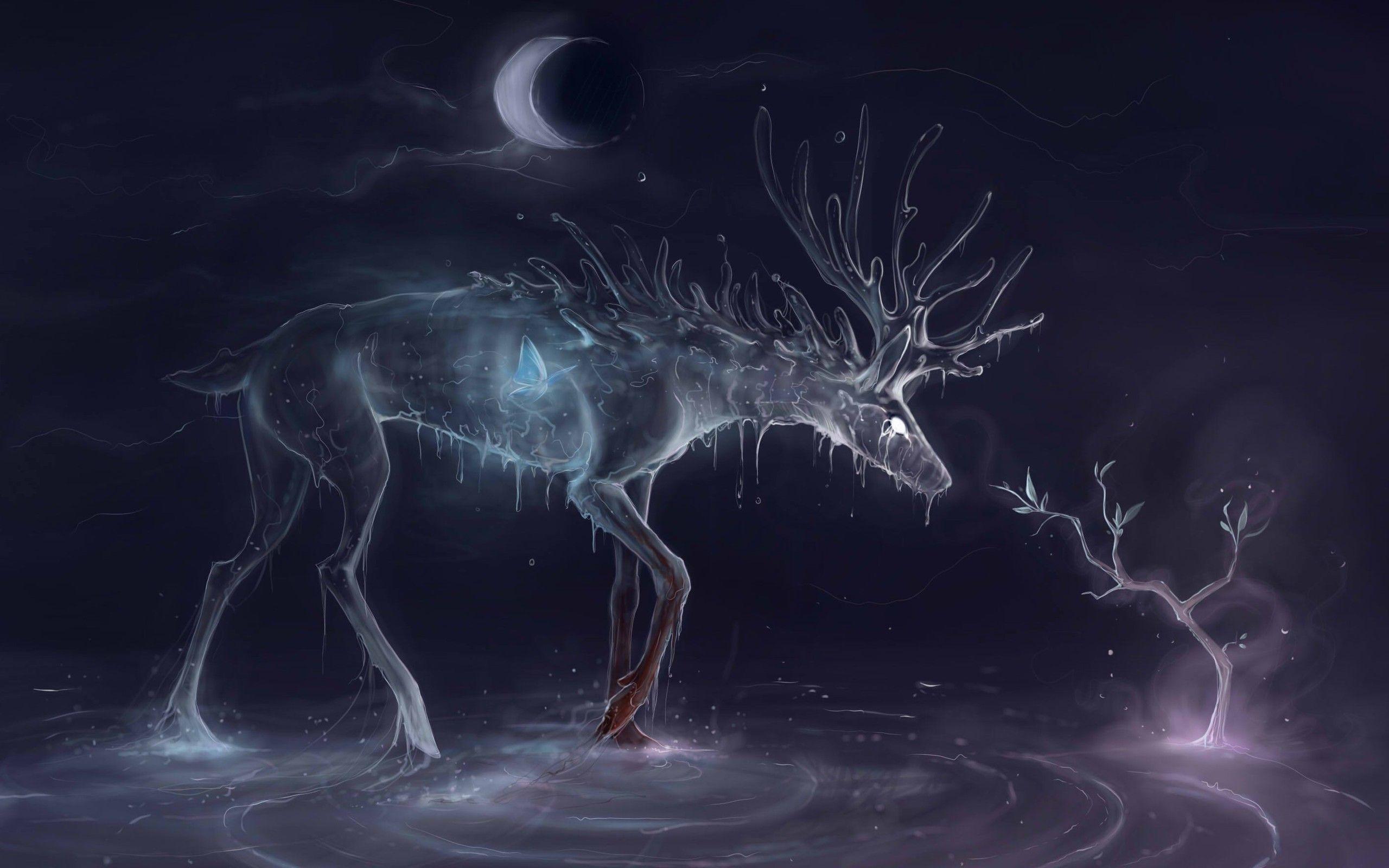 deer images hd
