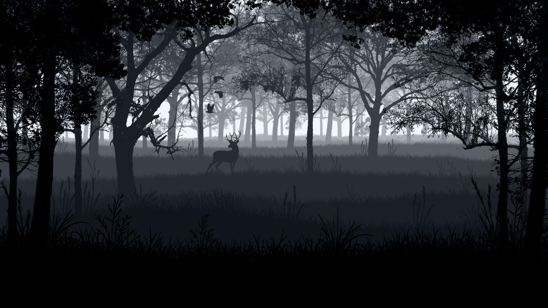 deer photos free download hd