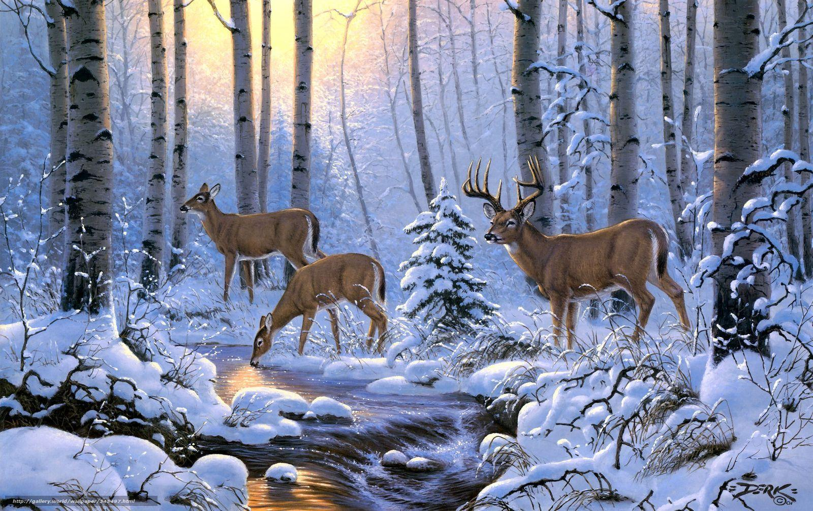 deer backgrounds for iphone