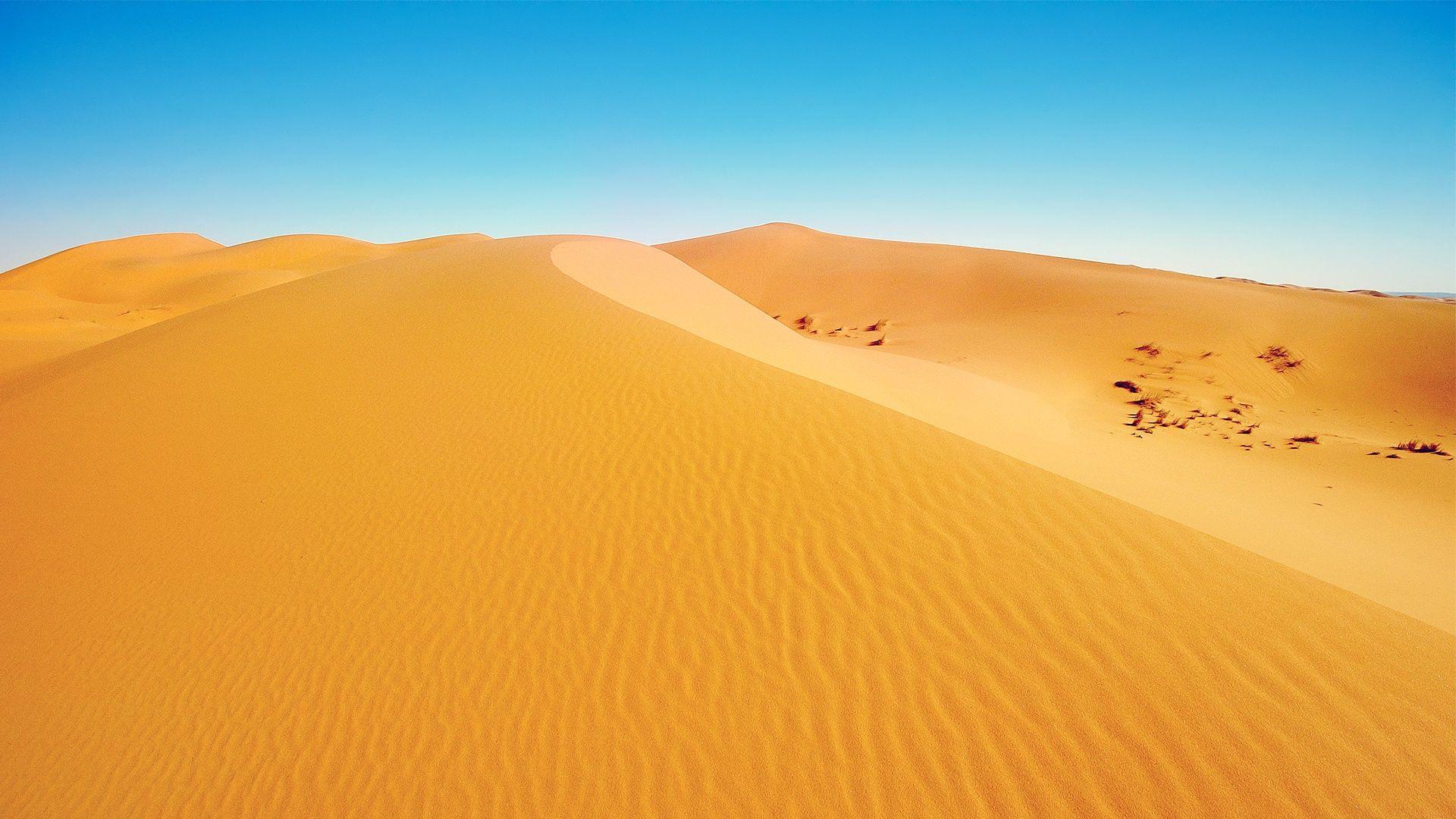 desertpictures