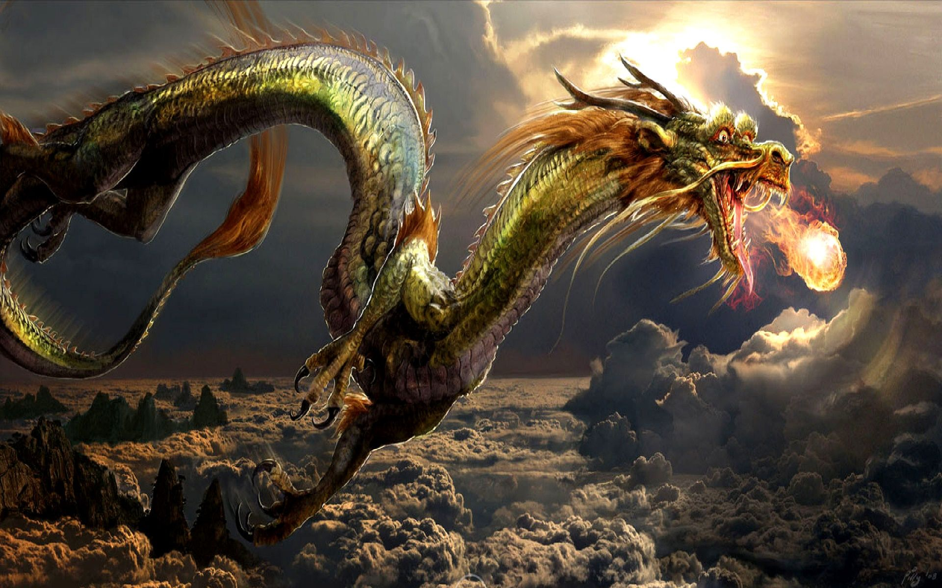 hd dragon wallpaper