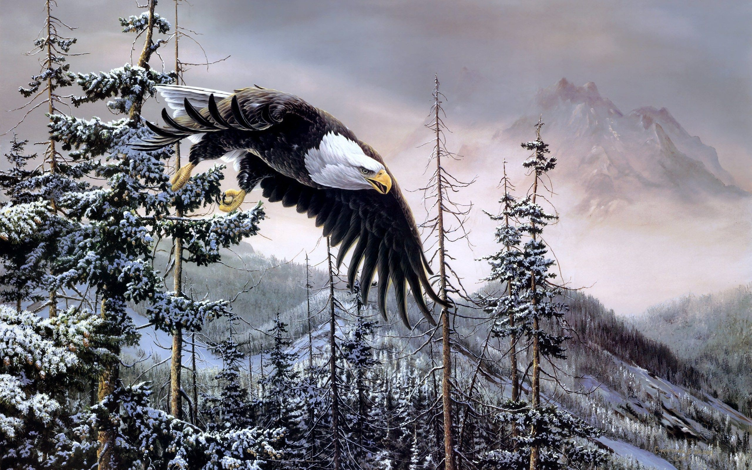 high definition eagle