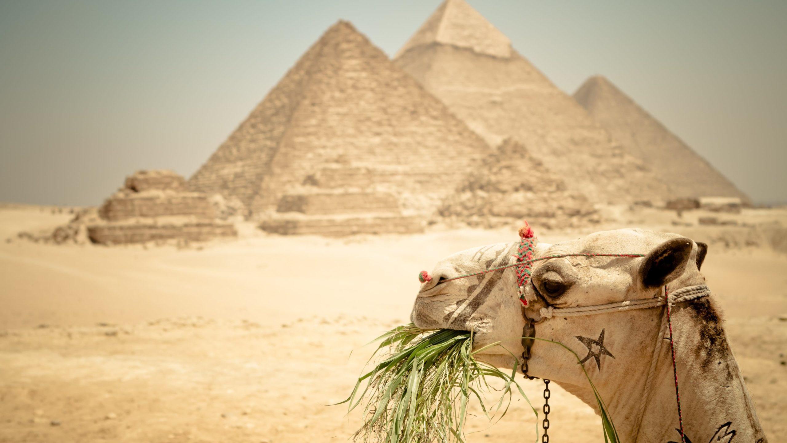 photos of ancient egypt
