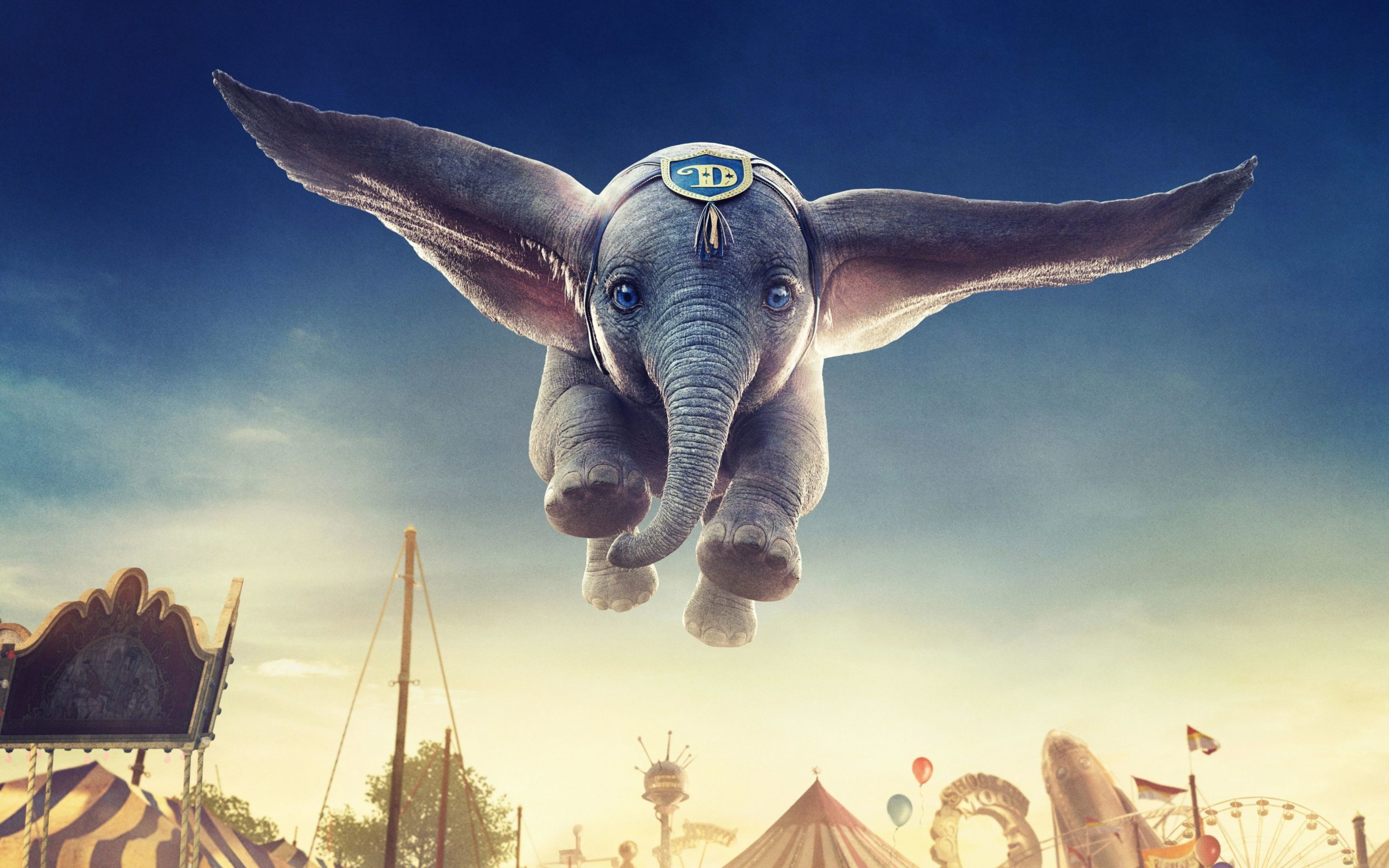 images of elephant