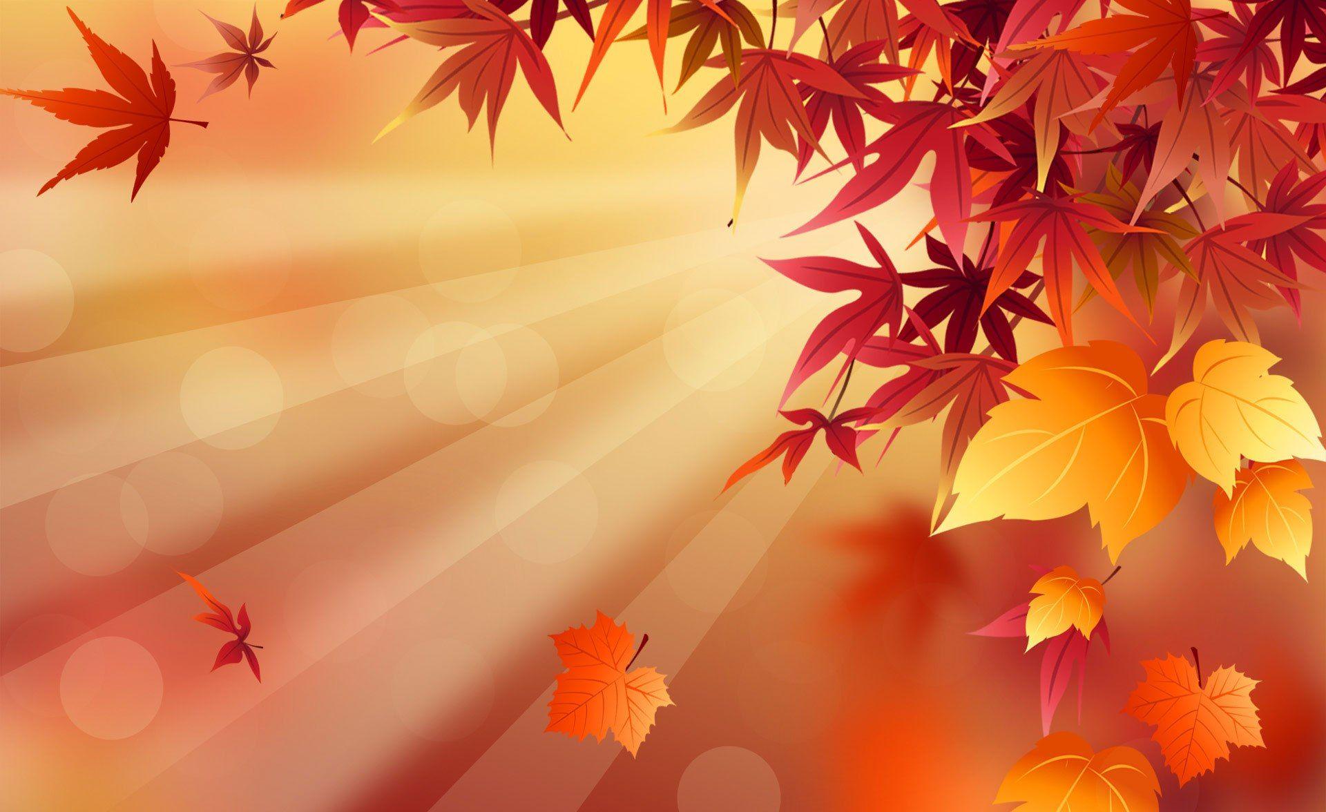 fall hd wallpaper