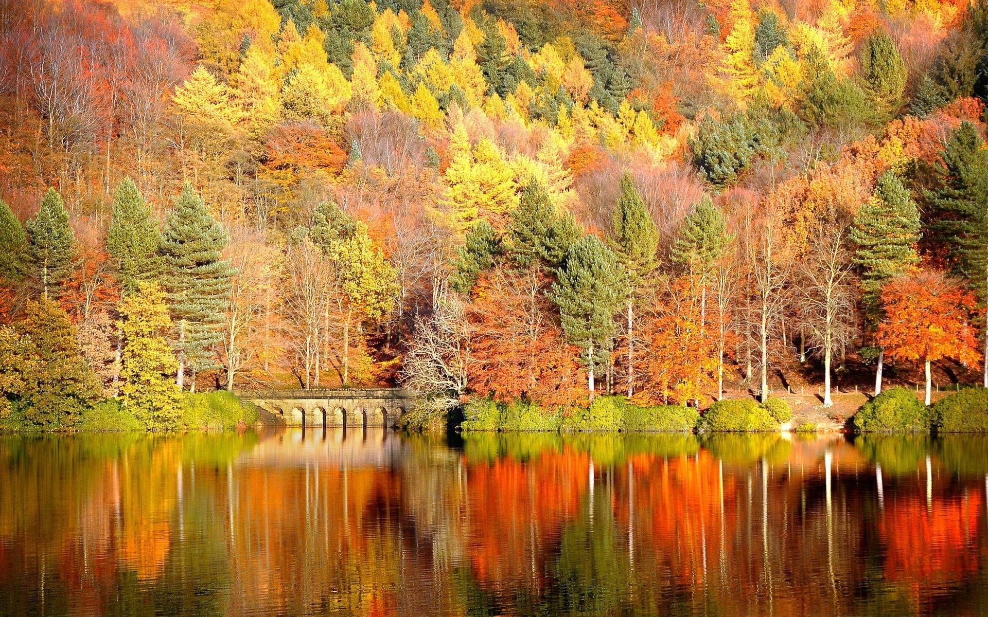 high resolution autumn wallpaper