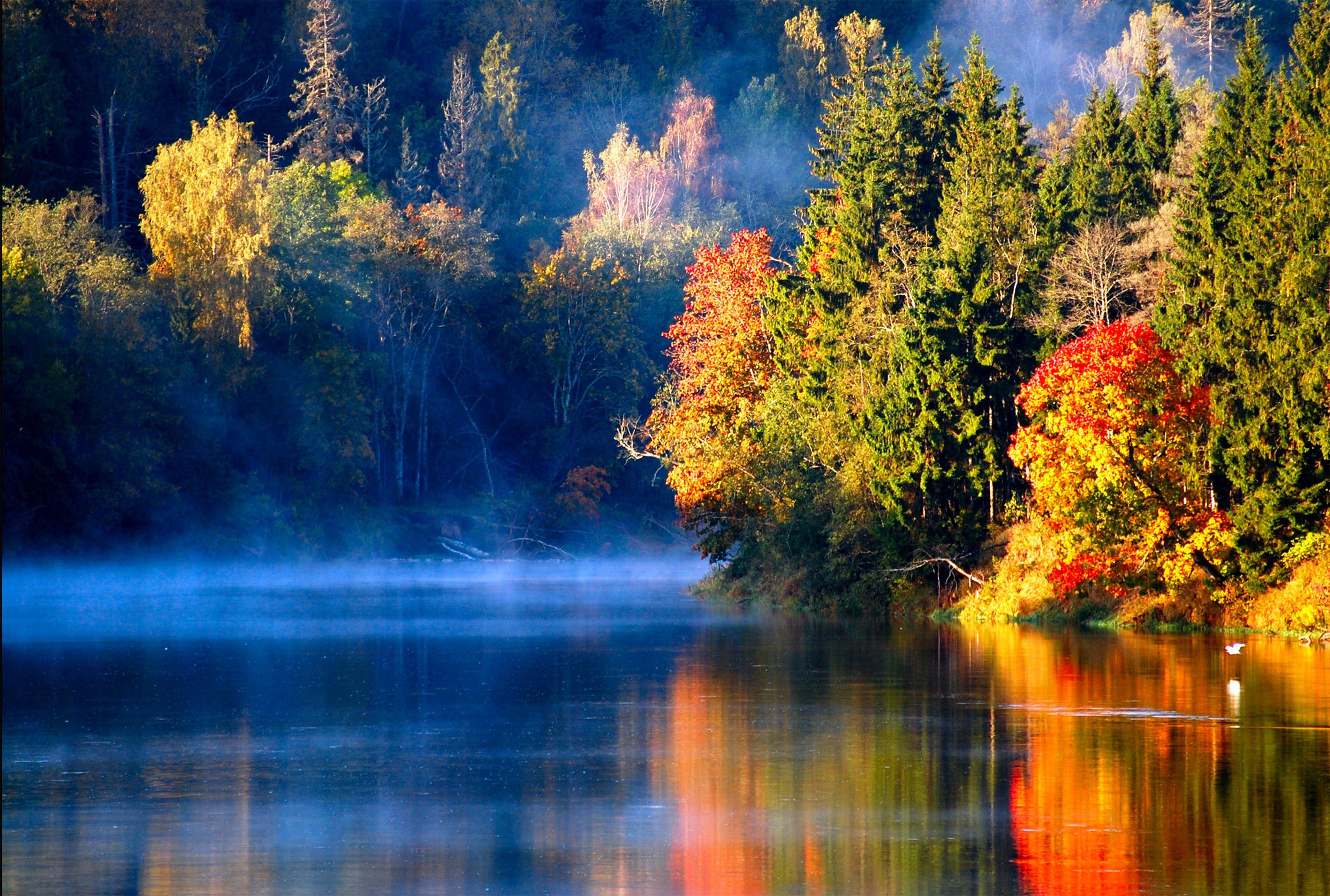 nature hd images for desktop