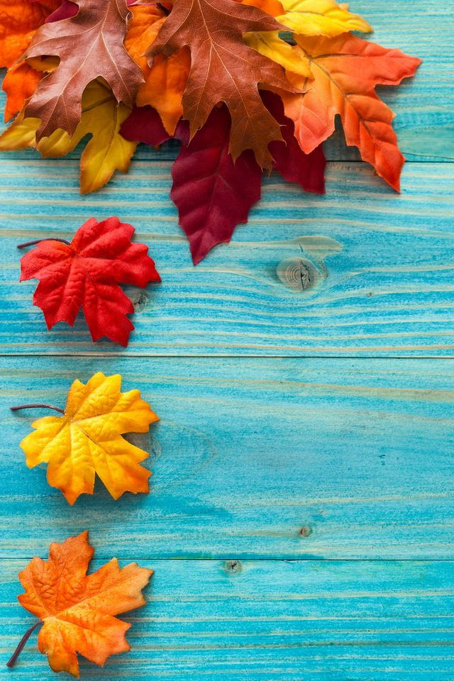 fall background iphone, hd fall iphone wallpaper