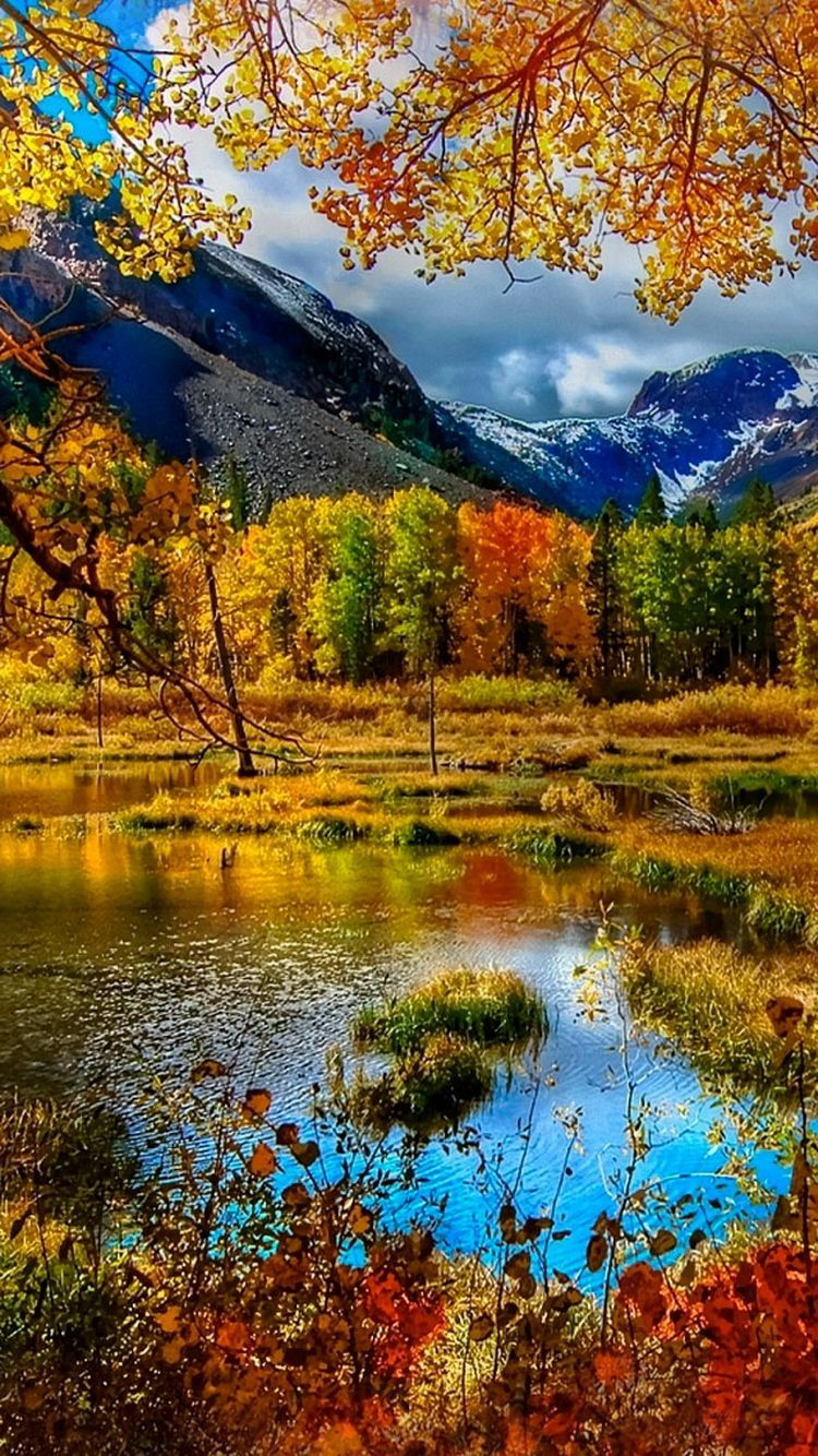 fall wallpaper iphone 6, fall iphone backgrounds