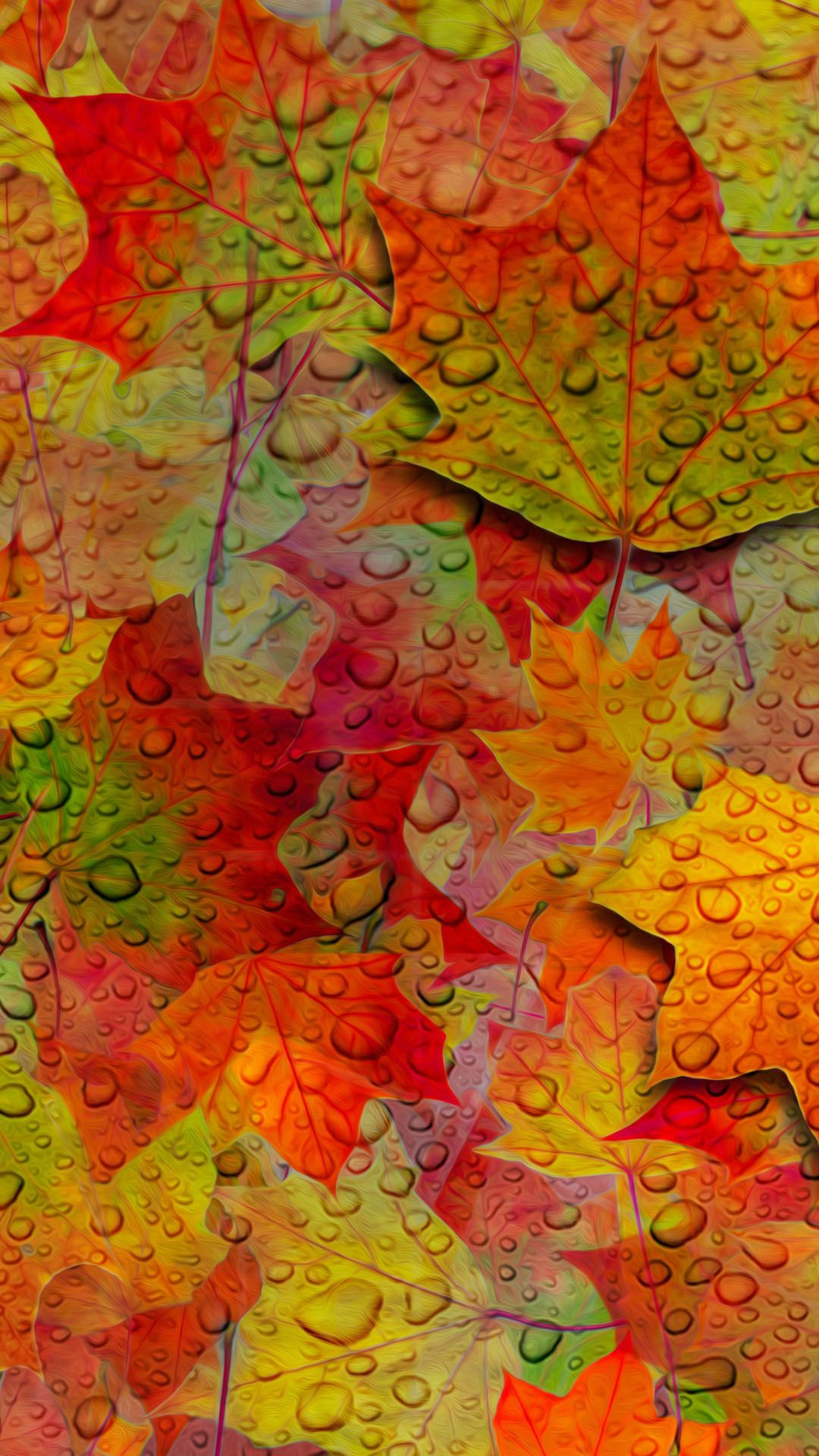 fall leaves iphone wallpaper, autumn wallpaper for iphone