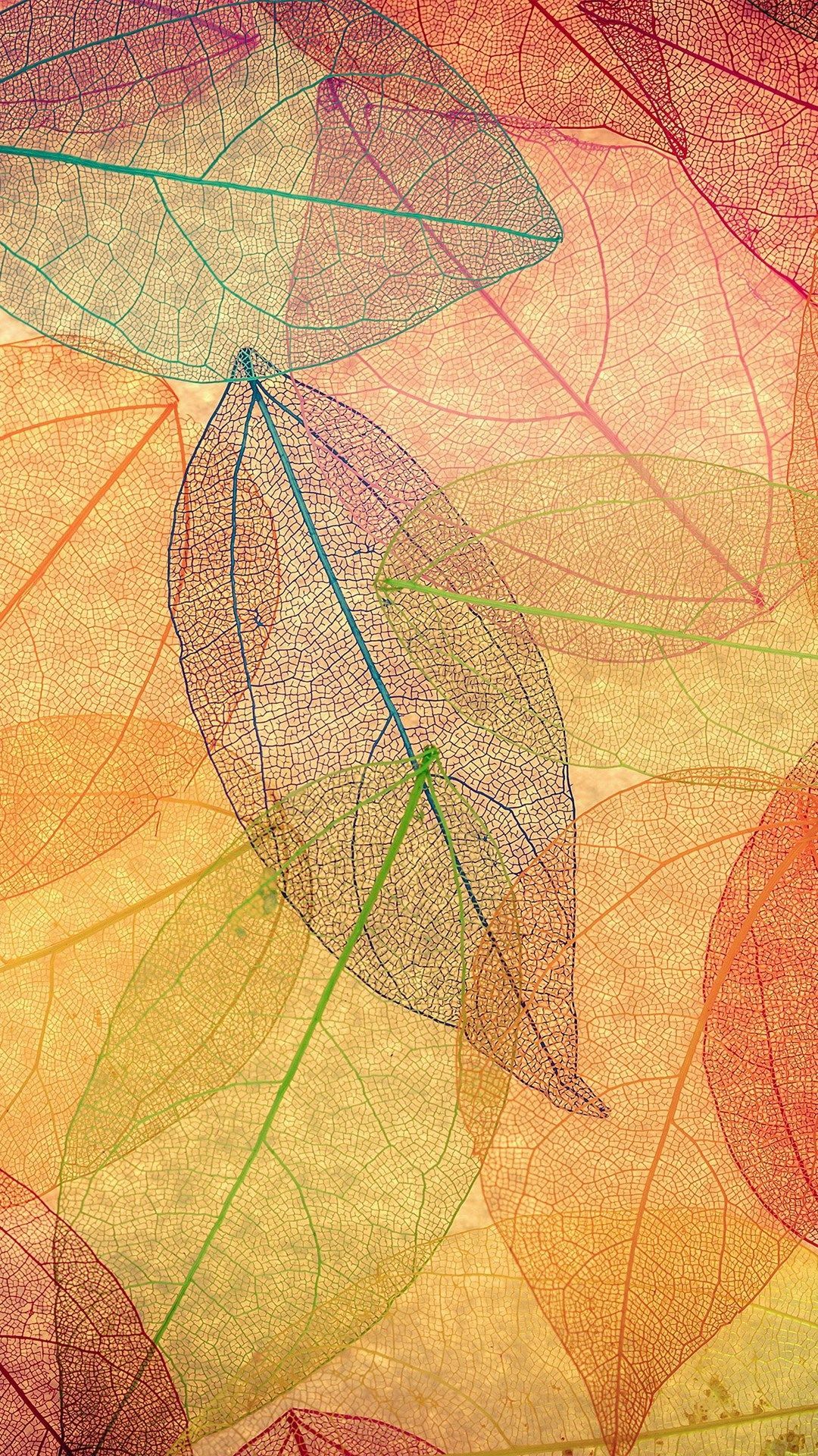 fall iphone wallpaper, fall wallpaper iphone 7