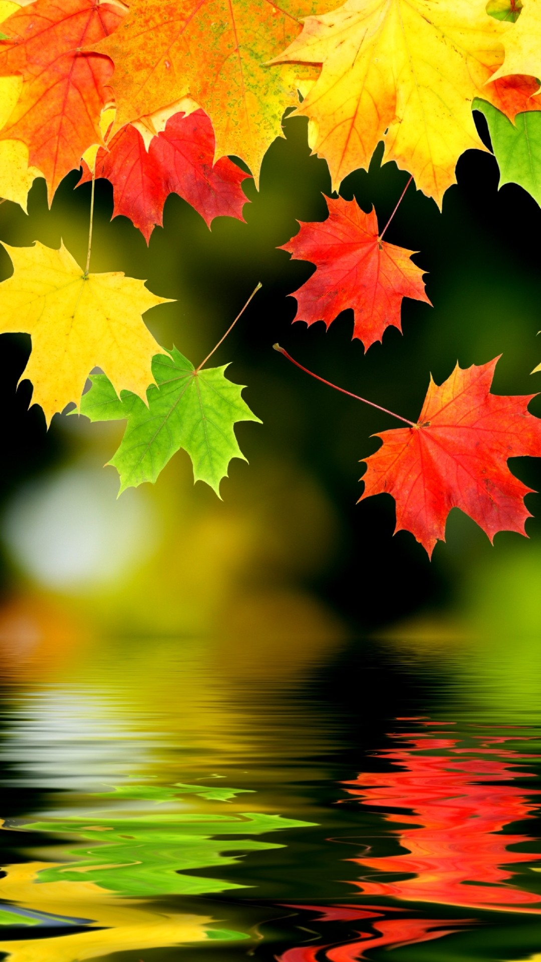 iphone 6 wallpaper fall, fall screensavers for iphone