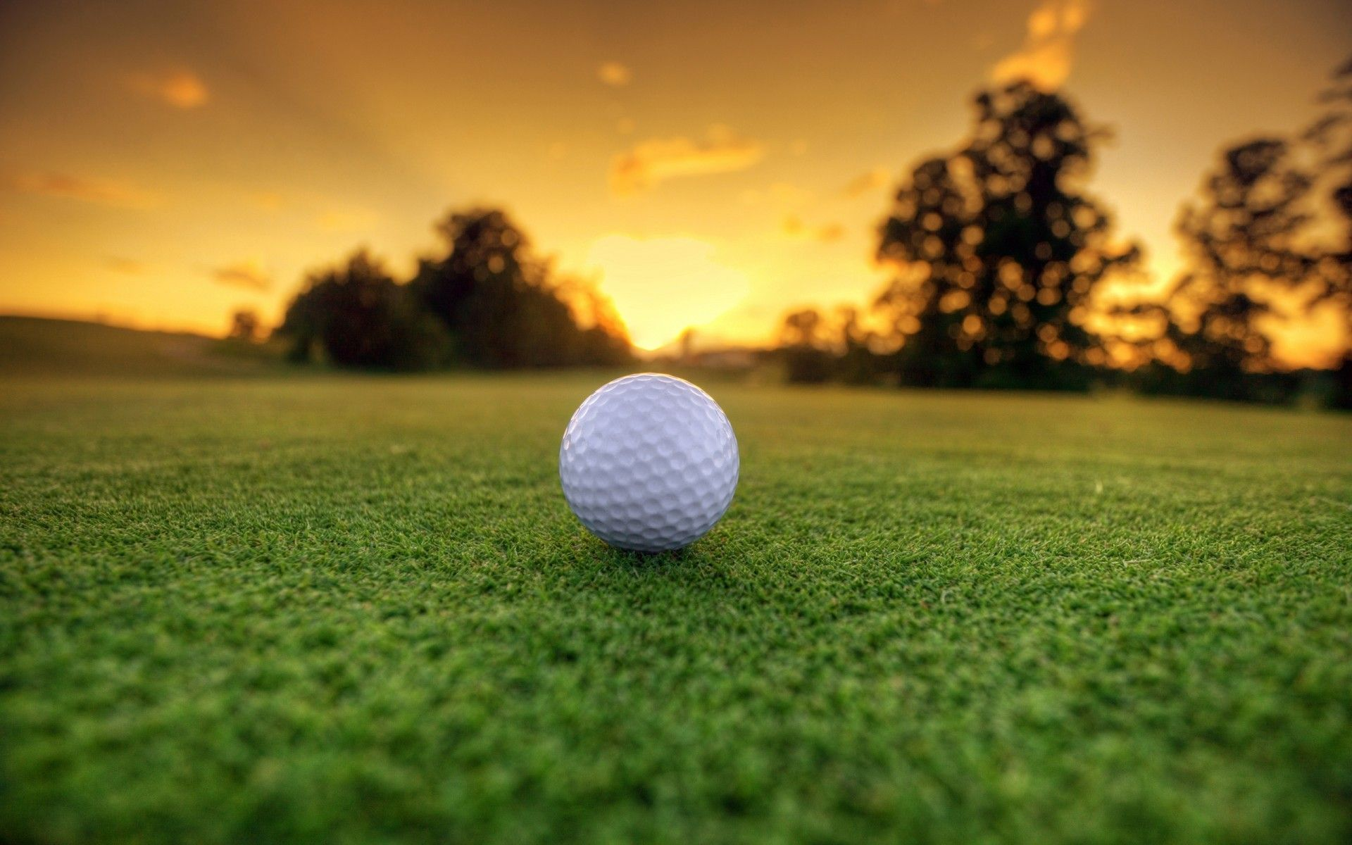 golf background images