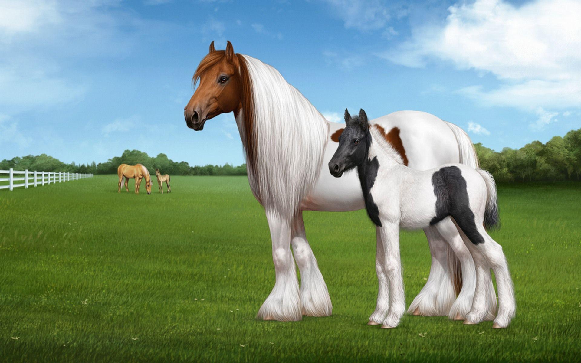 wallpaper of horse