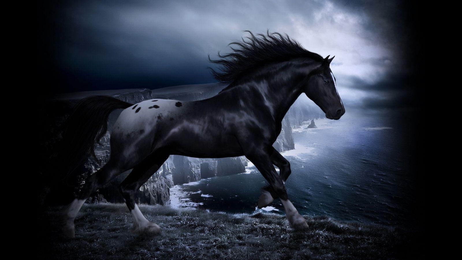 horse iphone wallpaper
