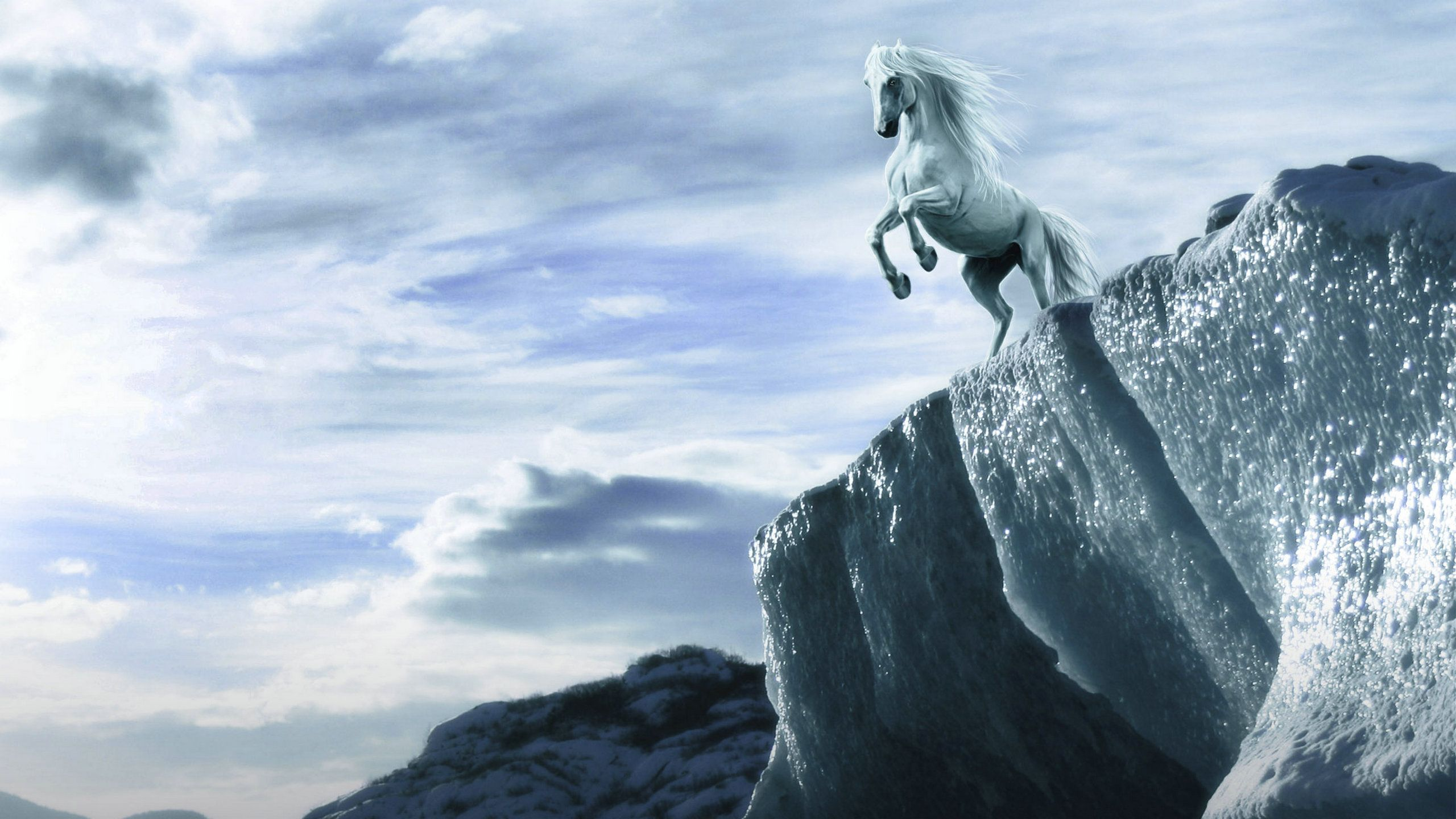 horse background pictures