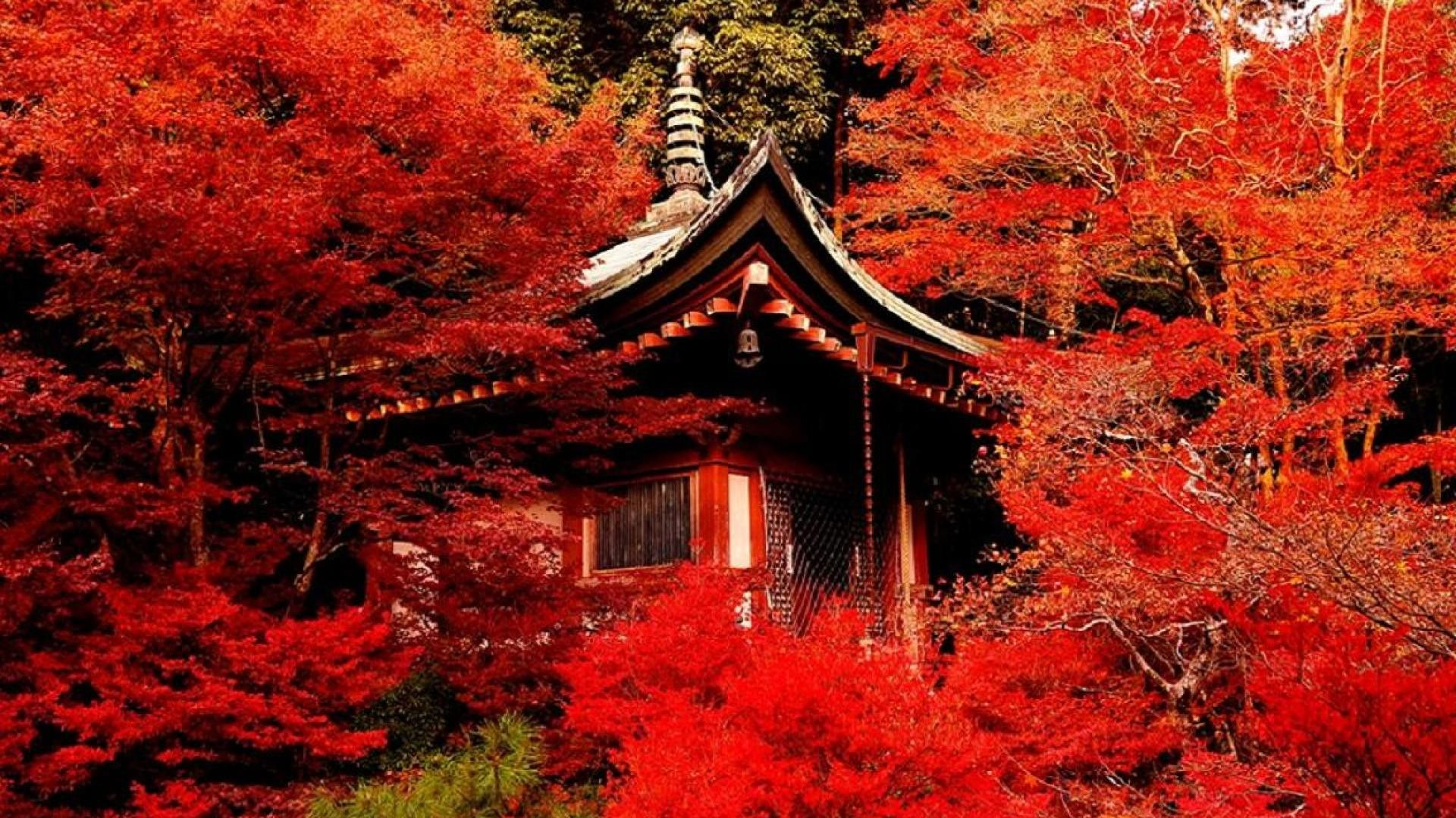 pictures of kyoto japan hd