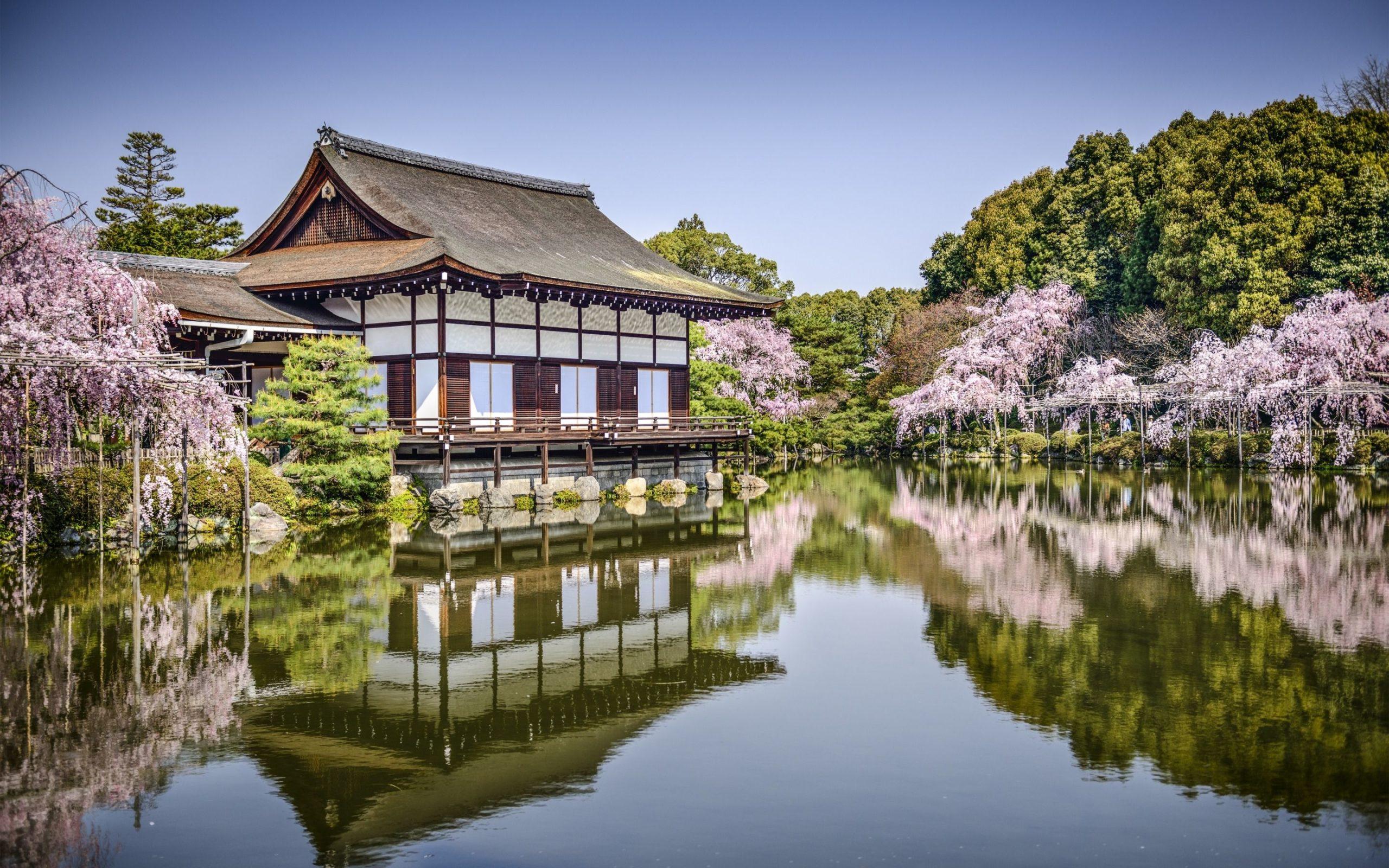 images of japanese geisha