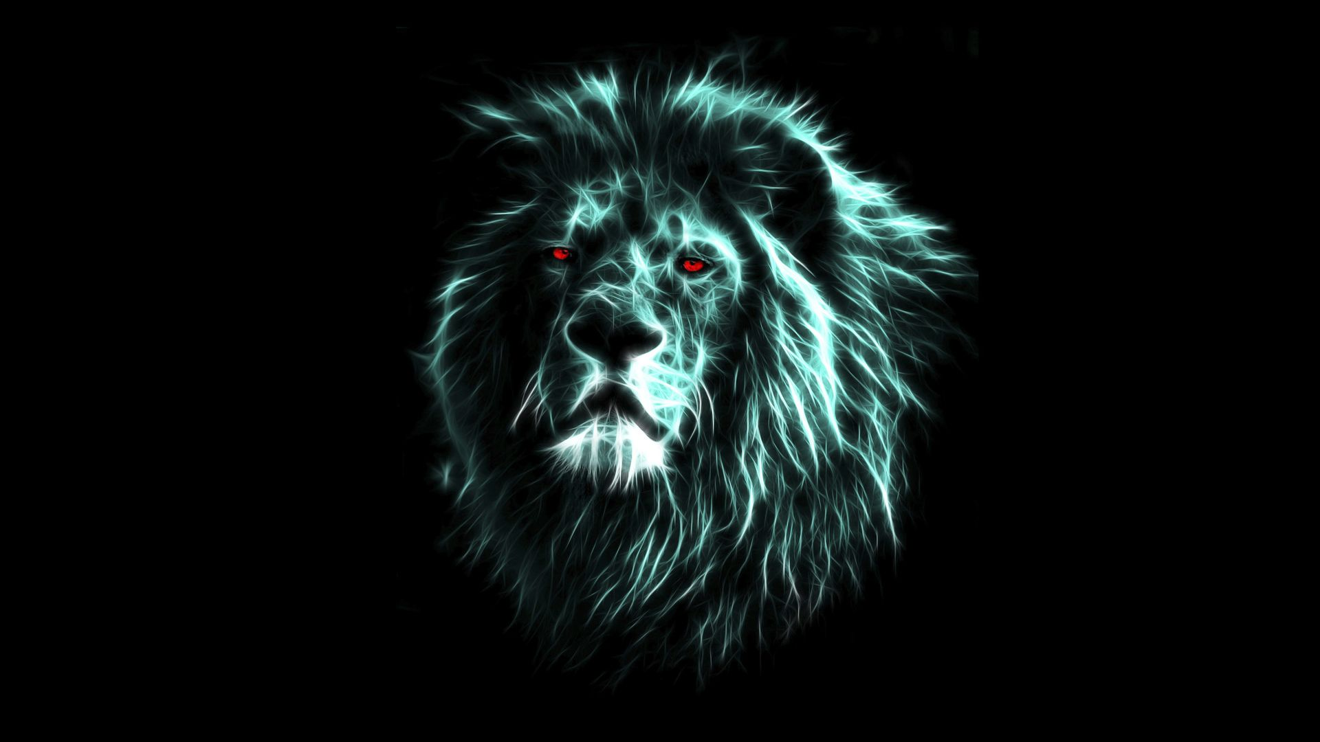 lion wallpaper