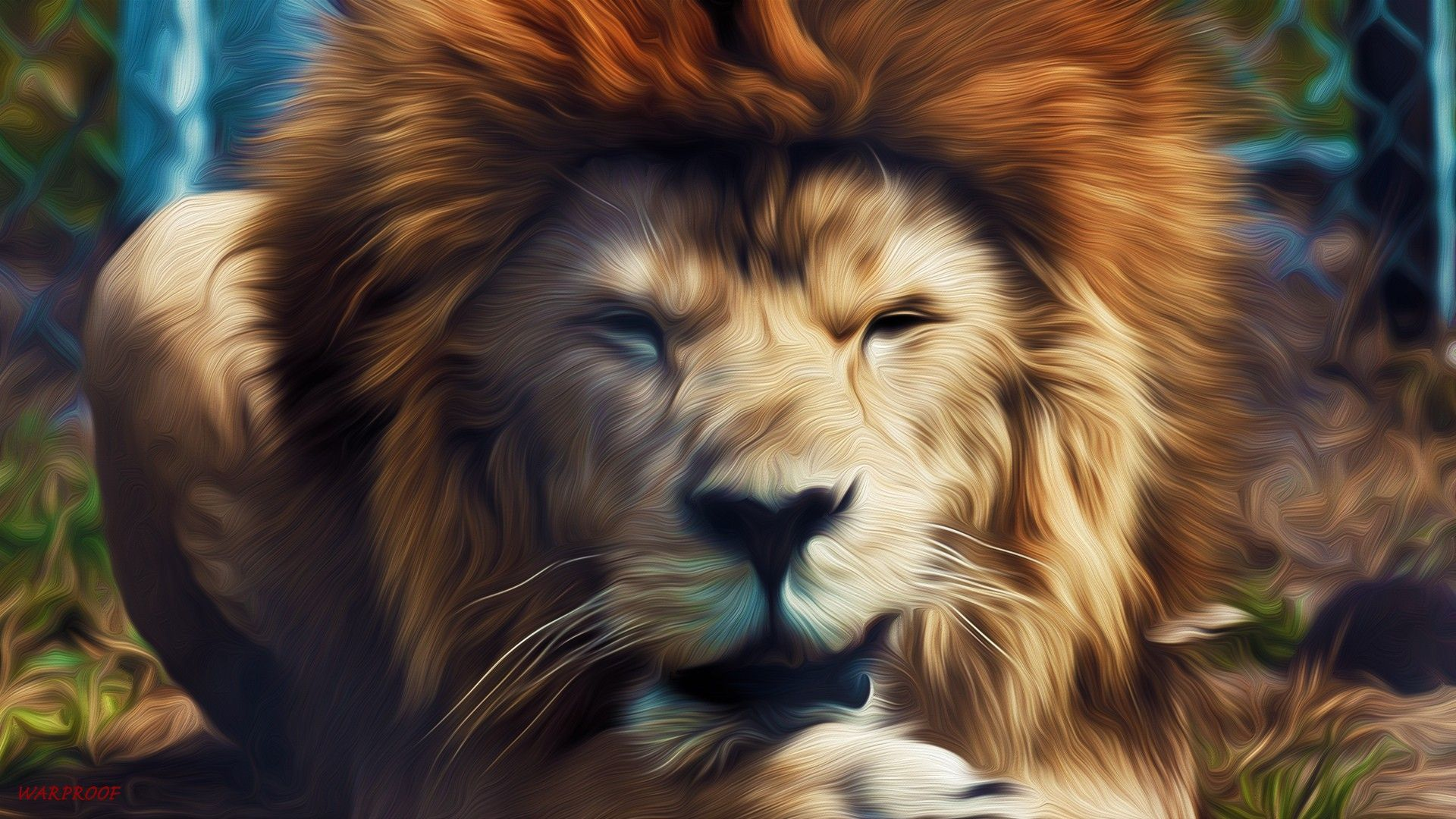 lion images download hd