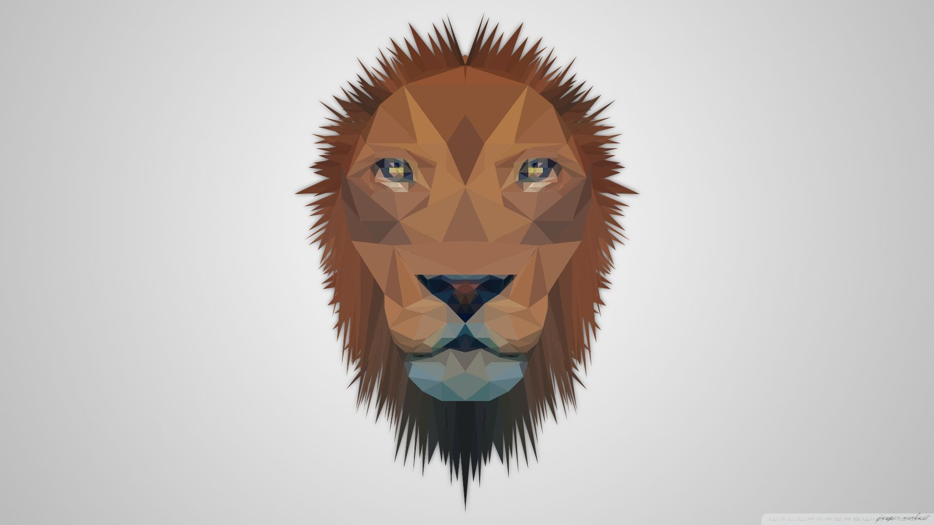 full hd lion wallpaper