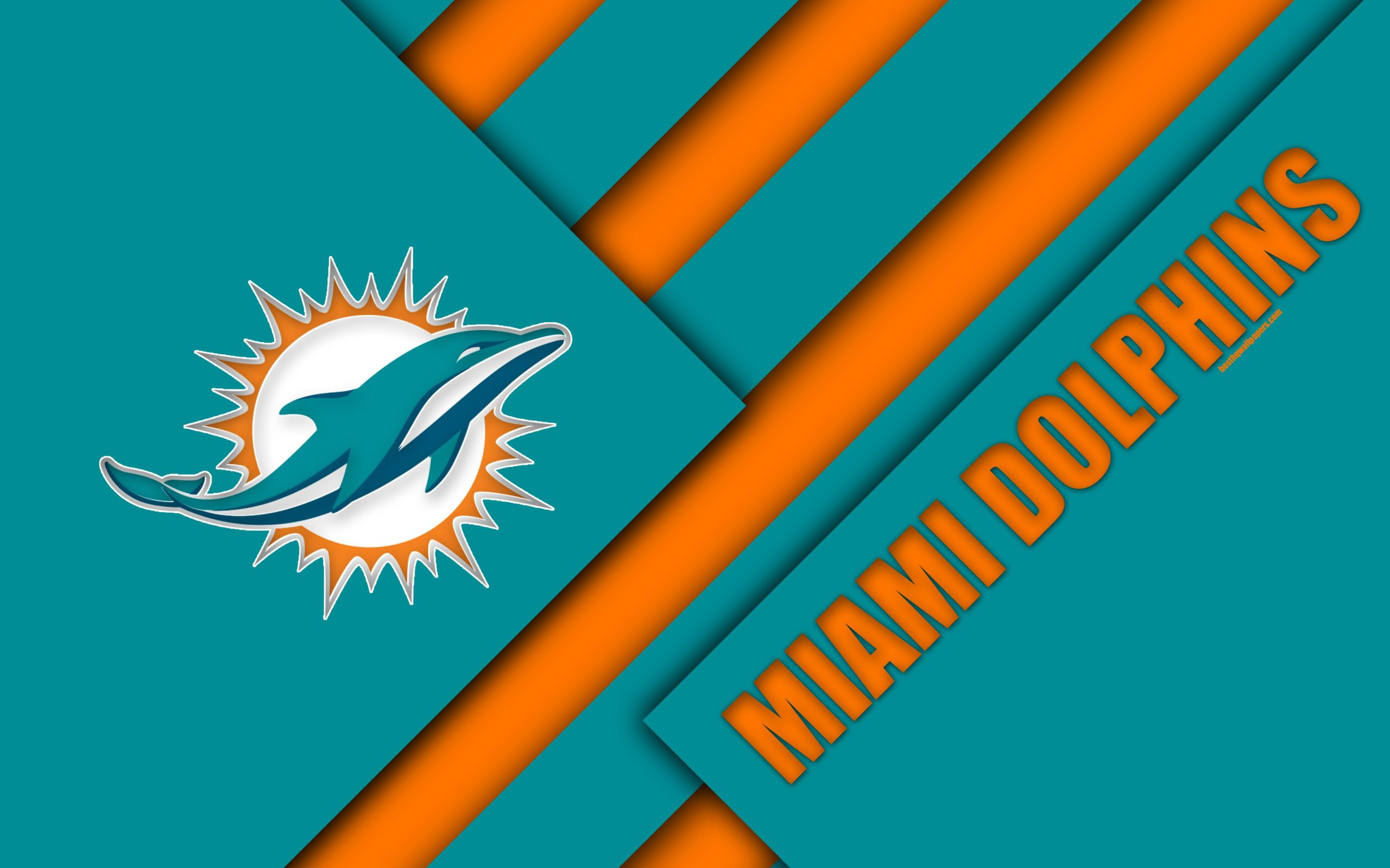 miami dolphins screen background