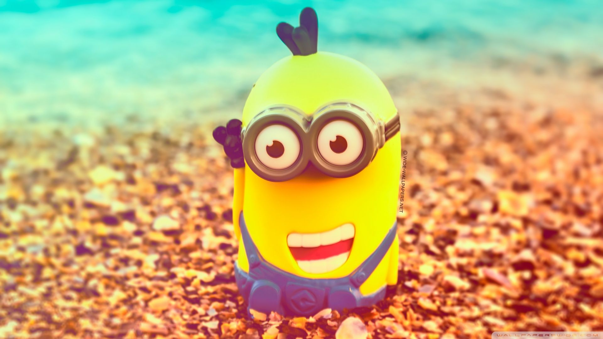 3 minions images